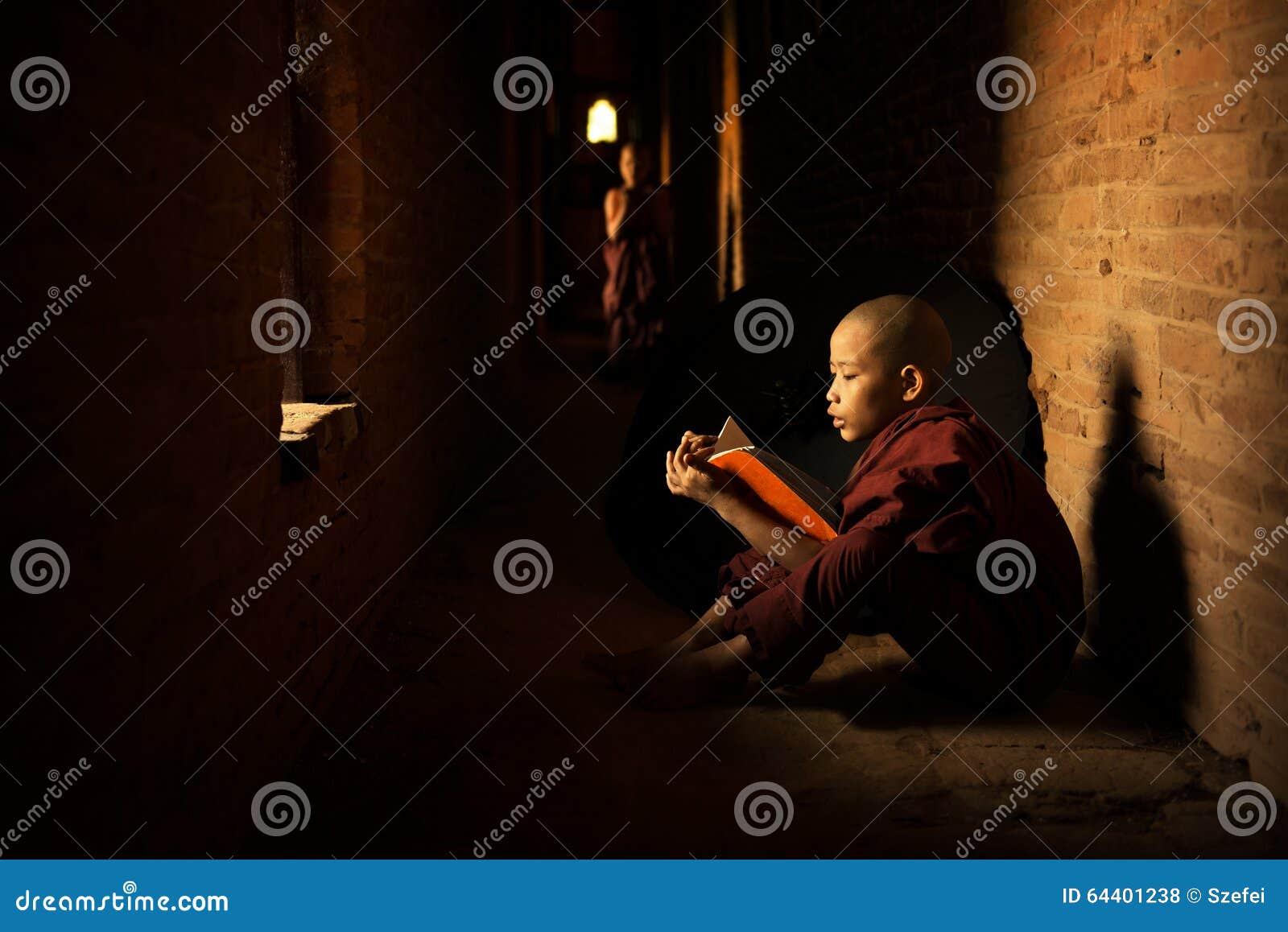 Буддийское чтение послушника
