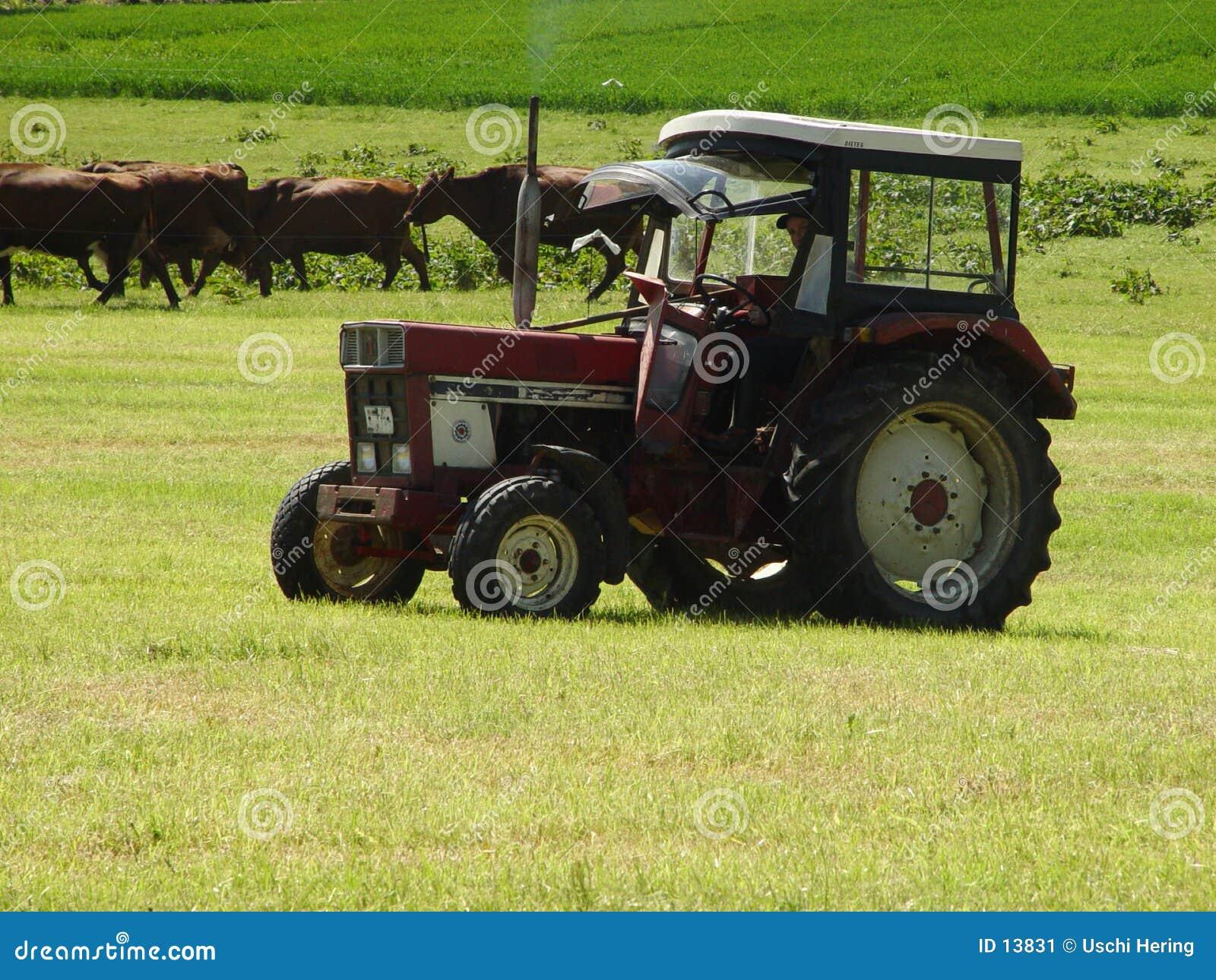 быть фермером