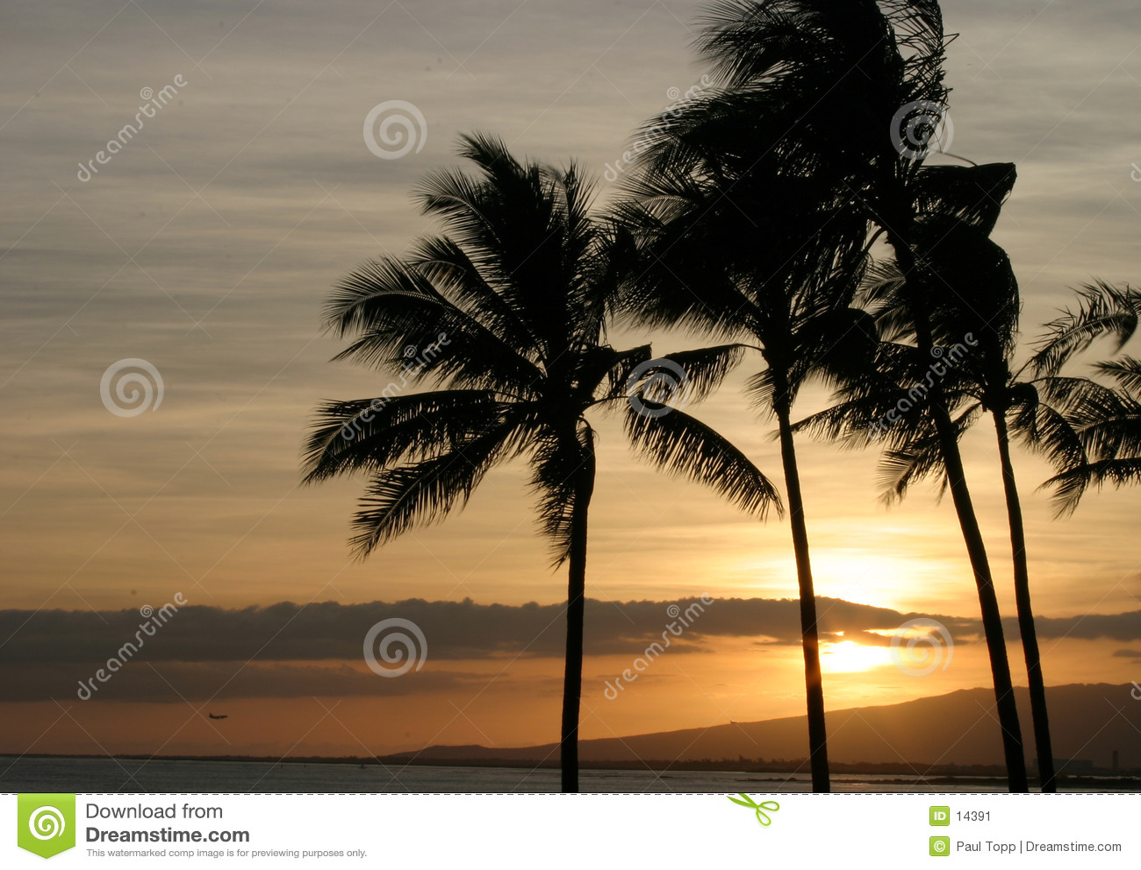 валы захода солнца неба ладони океана Гавайских островов
