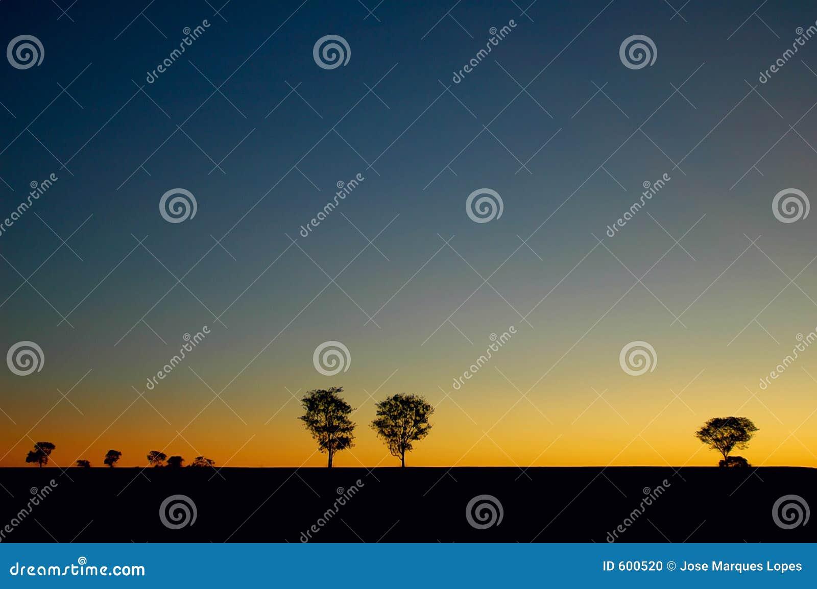 валы захода солнца