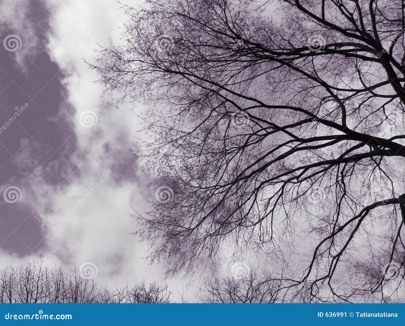 Download валы неба пугающие стоковое изображение. изображение насчитывающей york - 636991