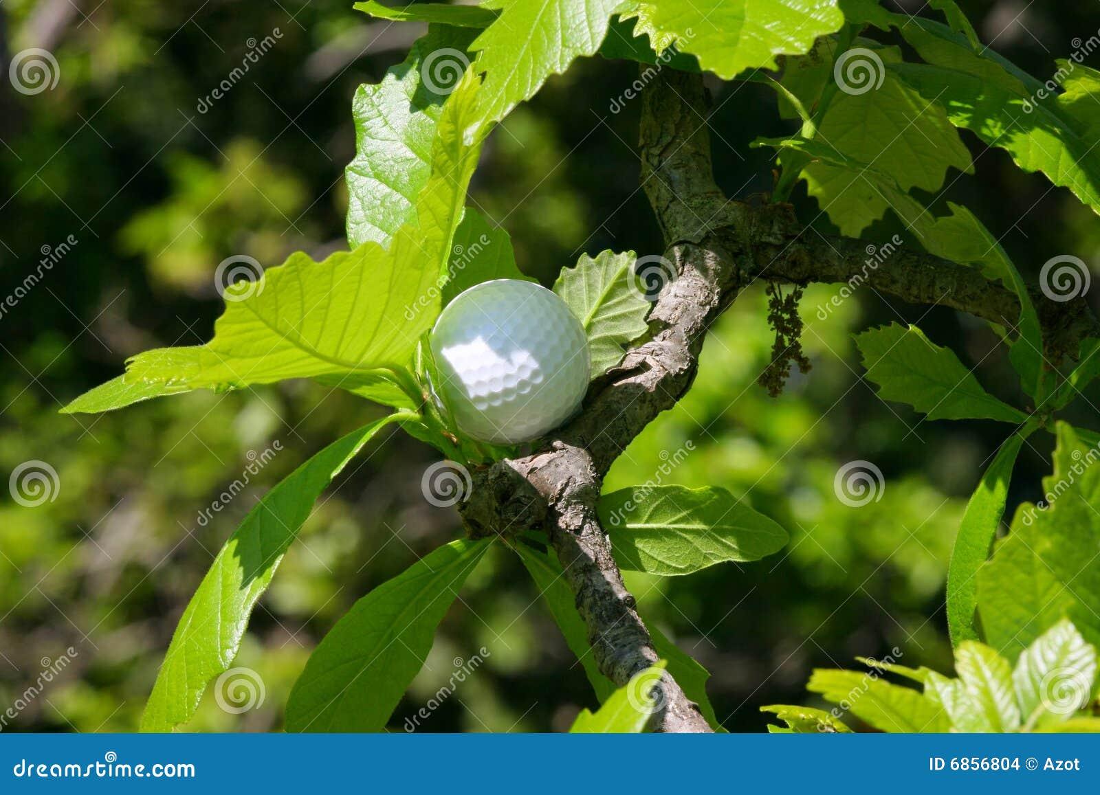 вал гольфа шарика