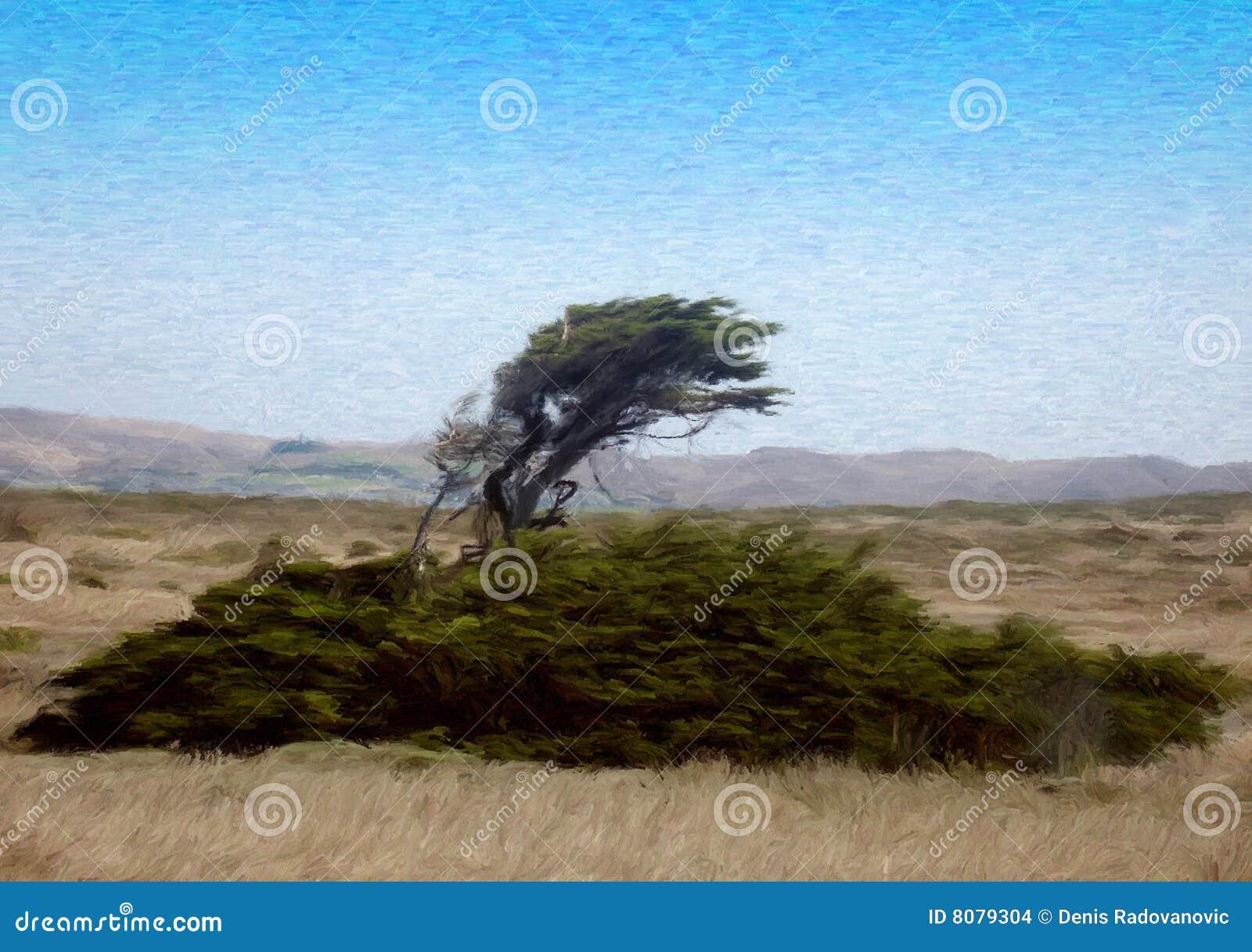 вал свободного полета ветреный