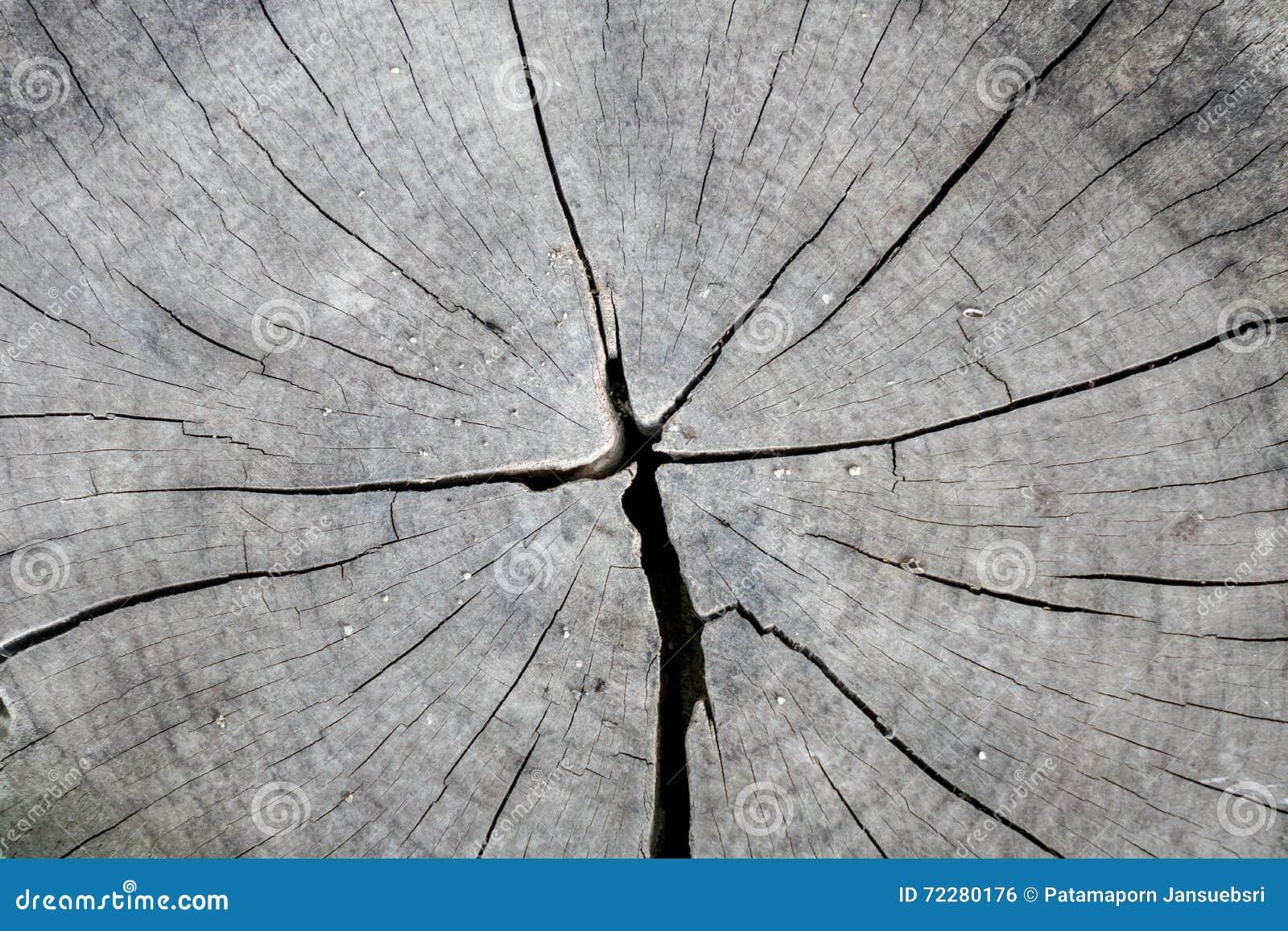 Download вал раздела разрешения осины перекрестный высокий Стоковое Фото - изображение насчитывающей backhoe, конспектов: 72280176