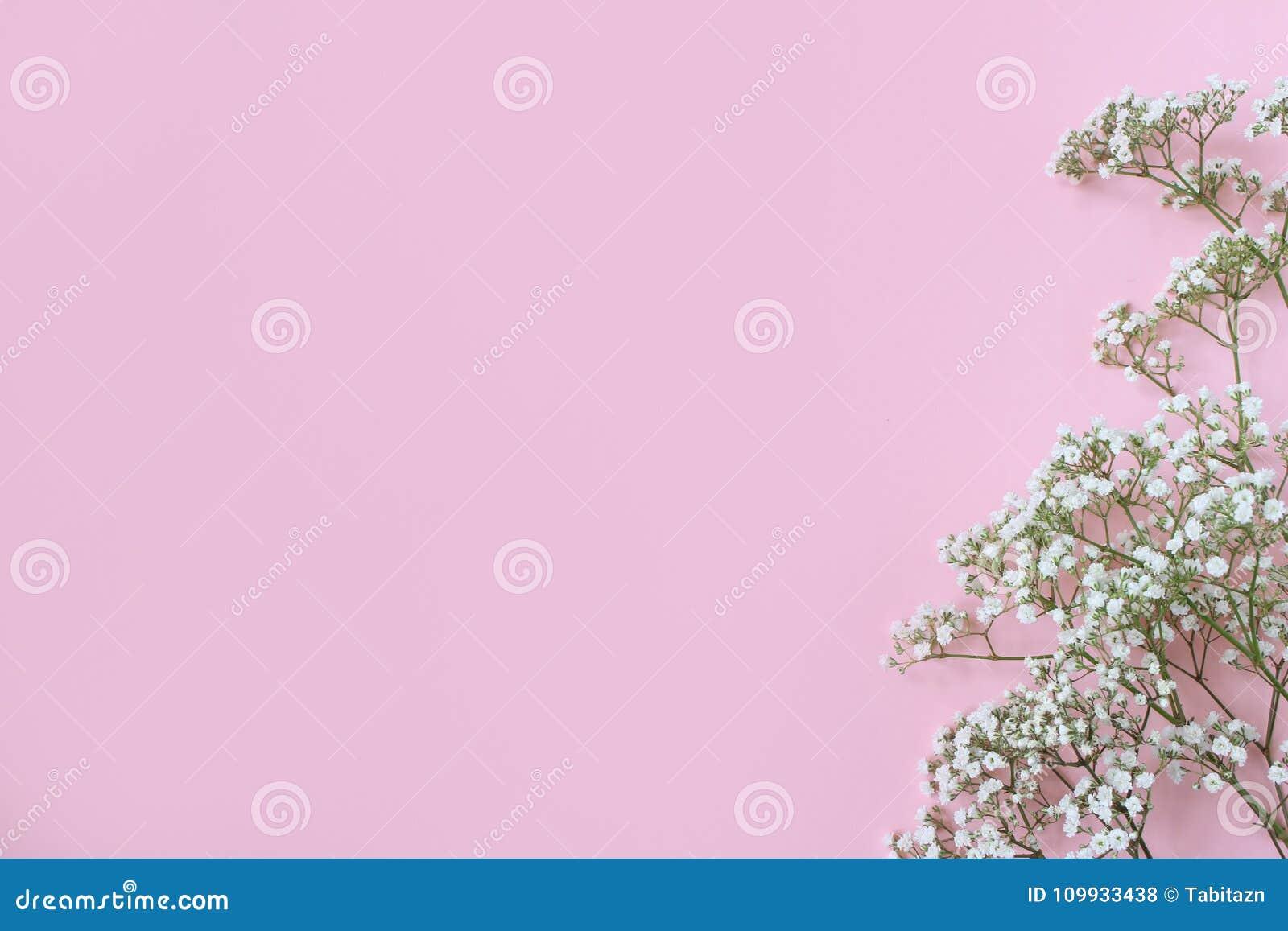 Введенное в моду фото запаса Женственная свадьба, модель-макет настольного компьютера дня рождения с гипсофилой дыхания ` s младе