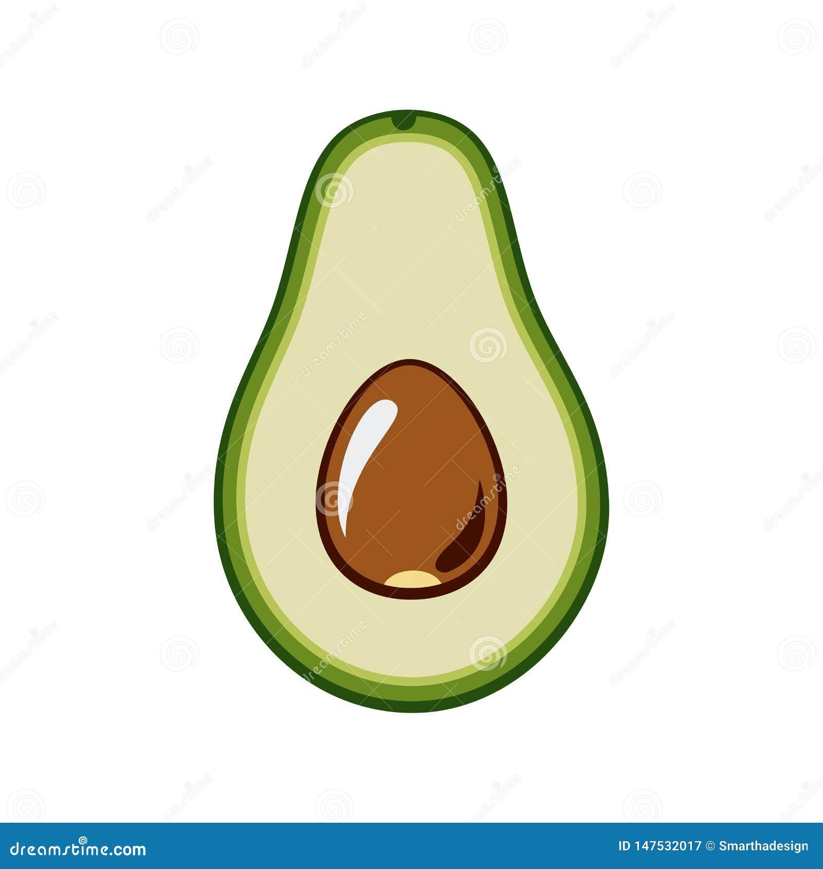Вектор авокадоа изолированный на белом backgroud Зеленое целый авокадоа, отрезок в половине, с лист и семенем Иллюстрация руки ве
