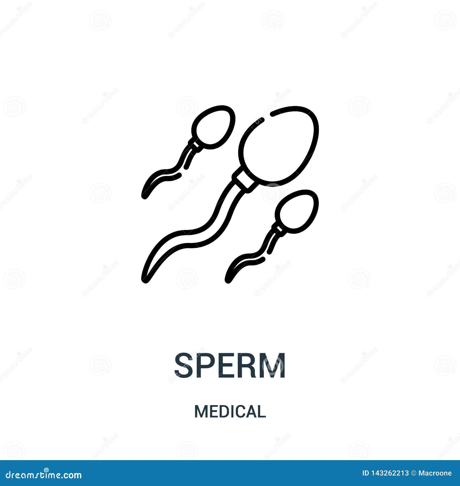 Ползы сперми