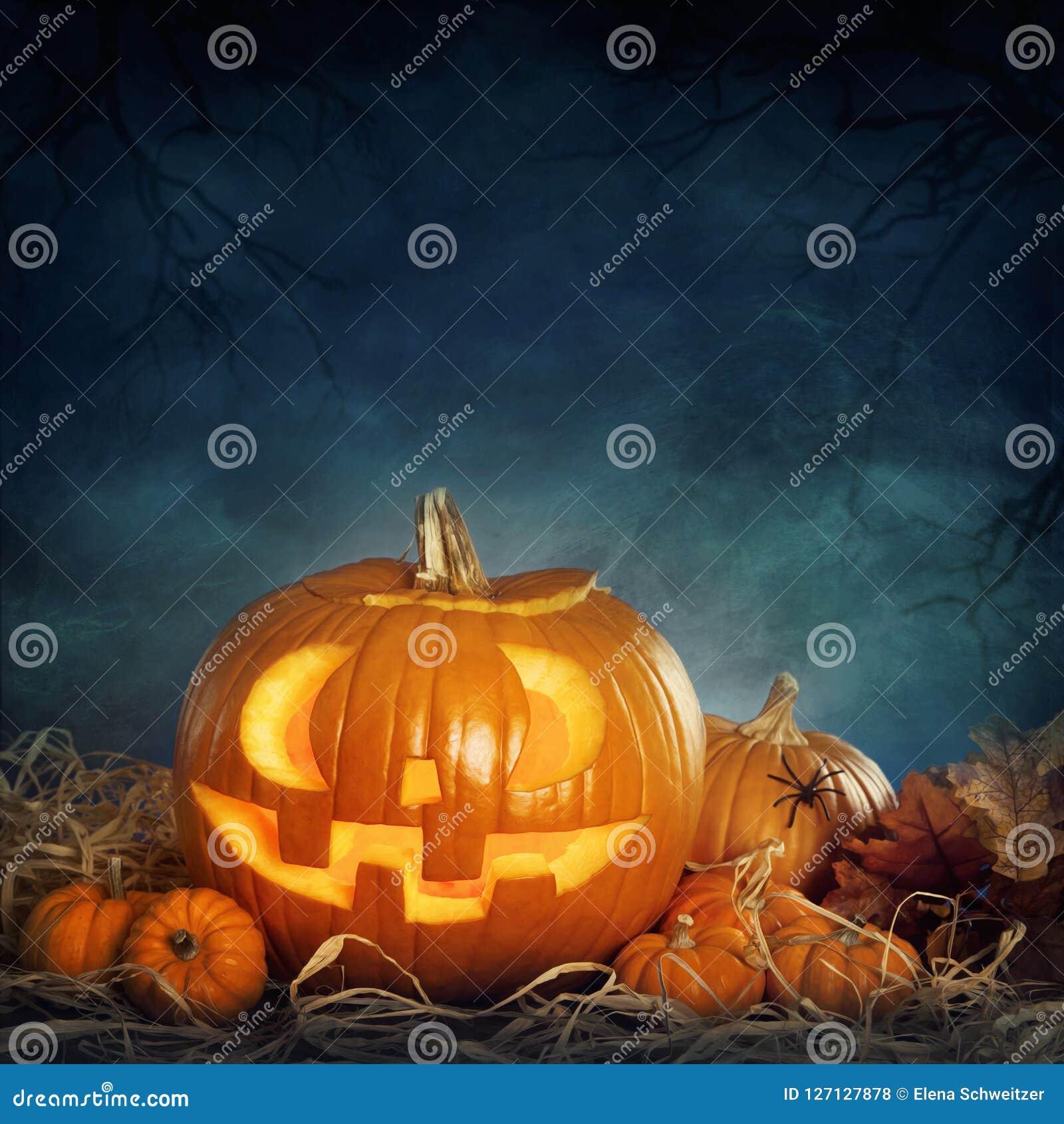 вектор иллюстрации halloween установленный тыквами