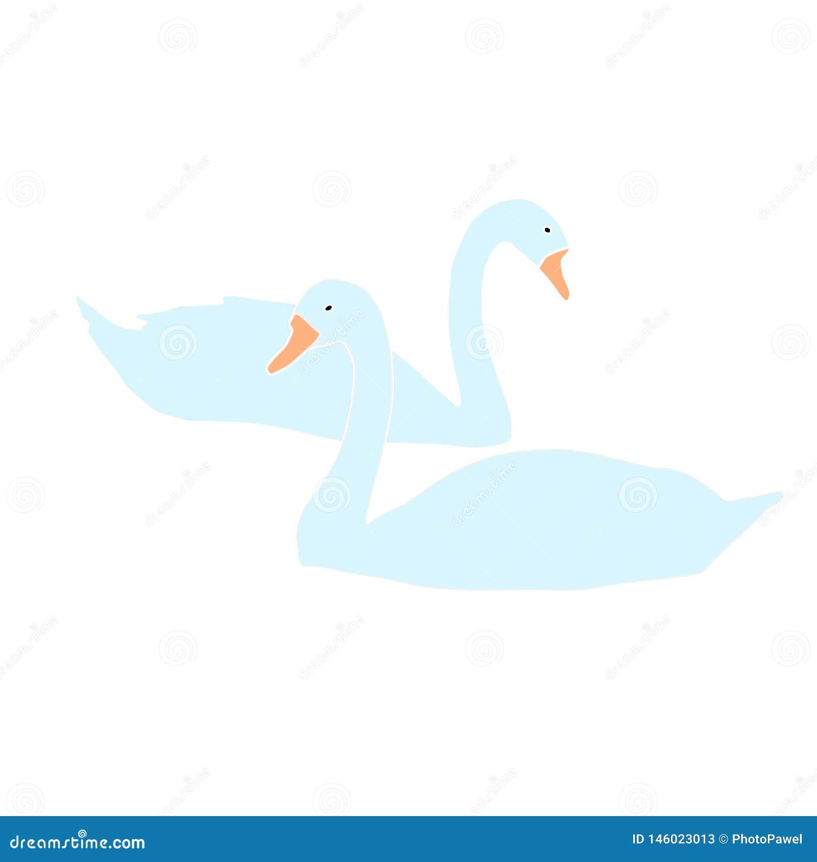 Вектор 2 лебедей на белой предпосылке