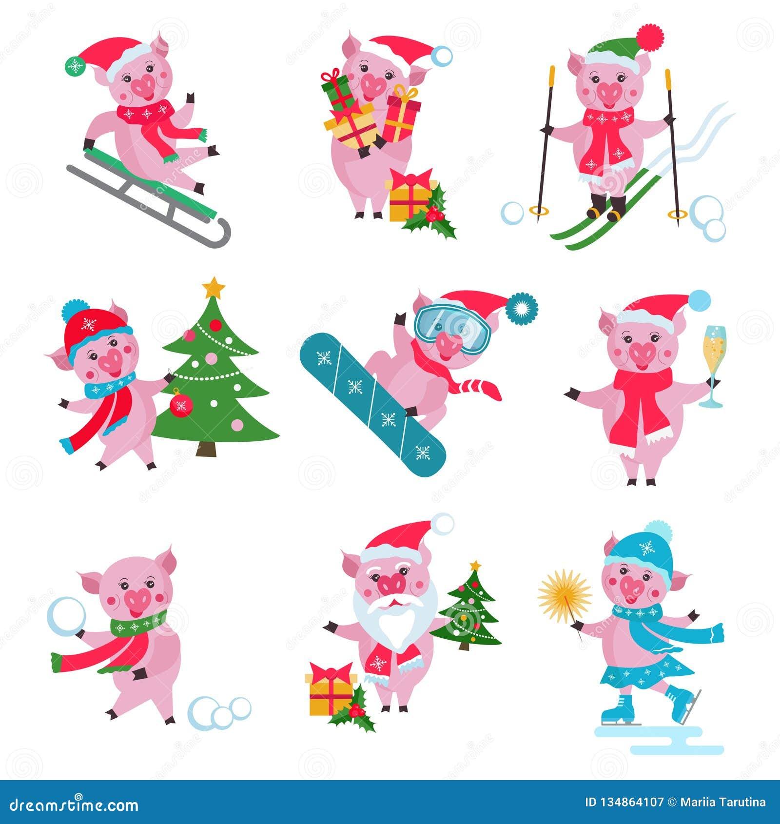 Вектор установил плоской свиньи рождества в различных ситуациях - едущ на скелетоне, снесите подарочную коробку, ехать сноуборд,
