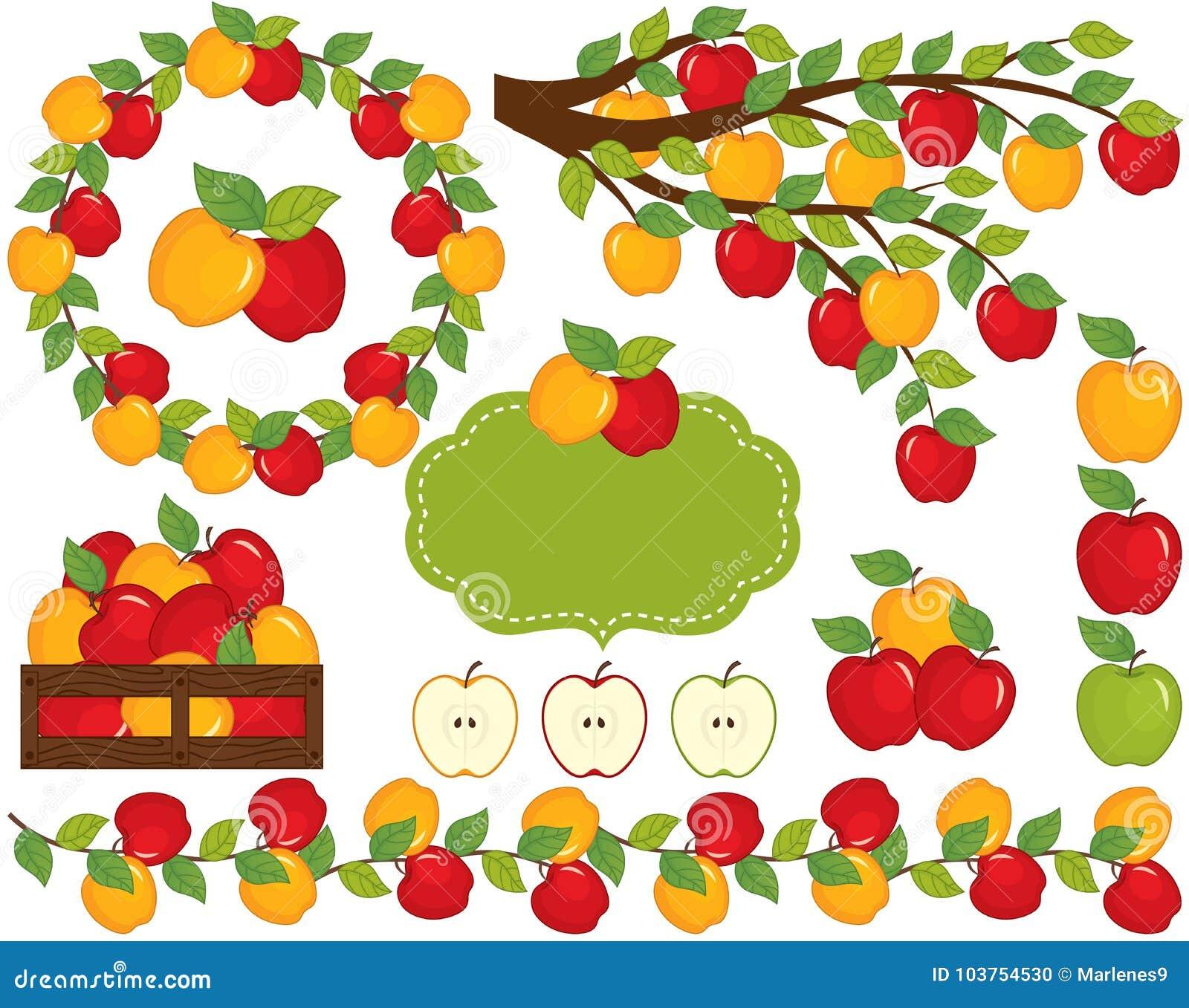 Вектор установленный с яблоками, венком и ветвью
