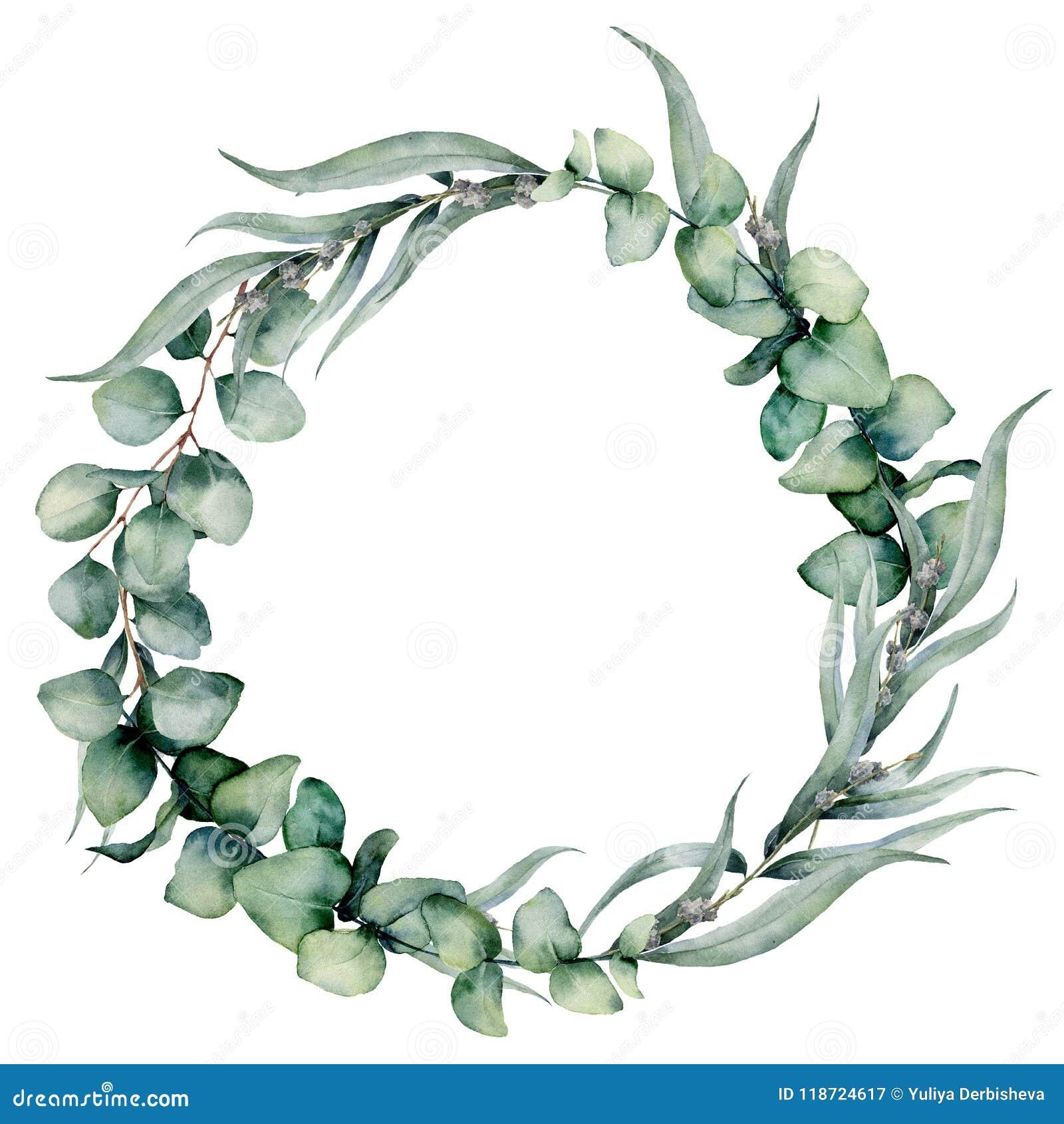 Венок акварели флористический с различными листьями евкалипта Вручите покрашенный венок с синью младенца, евкалиптом доллара sive