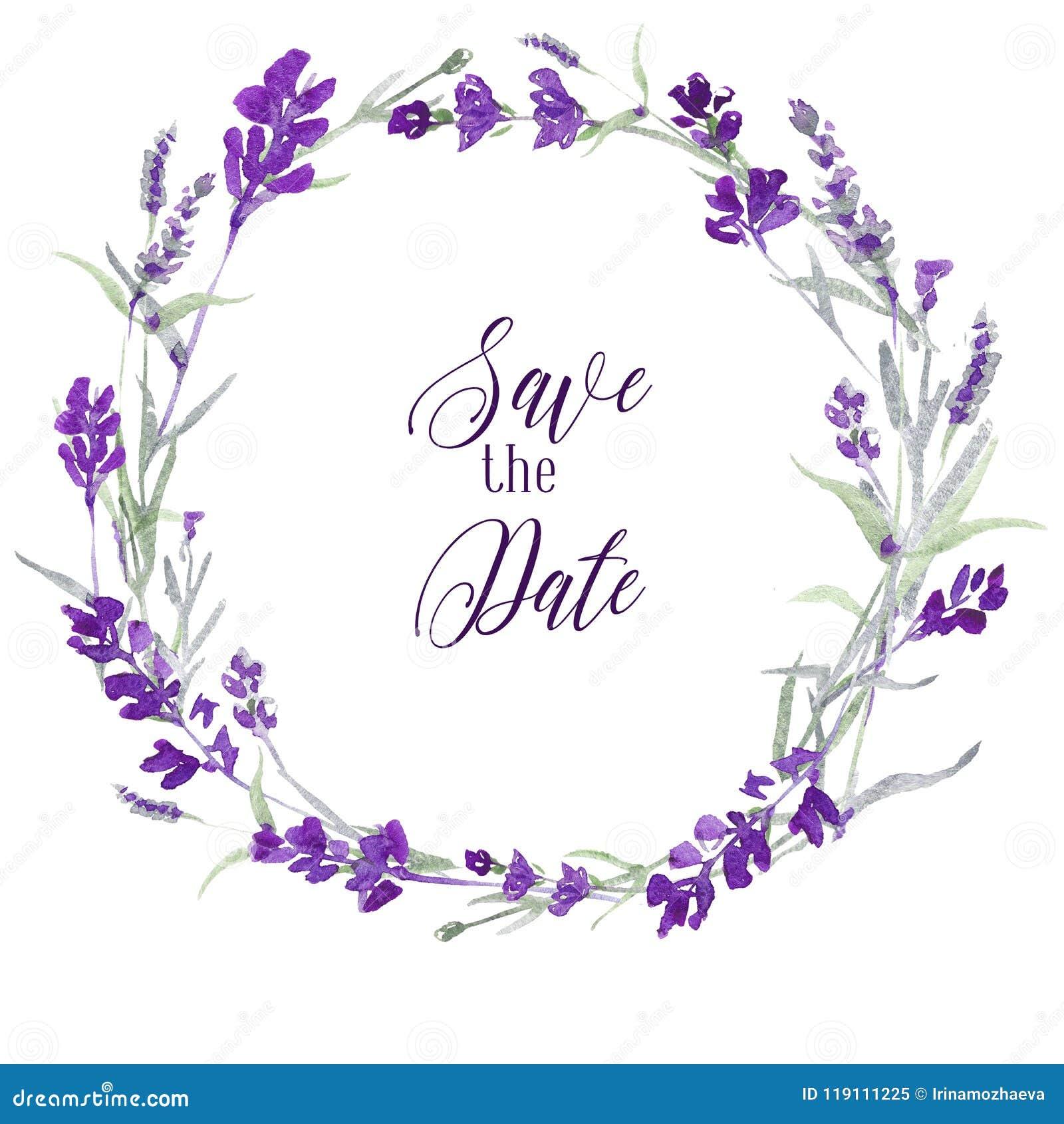 Венок лаванды Watecolor чувствительный флористический на белой предпосылке с спасением сообщения дата Голубые цветки и листья зел