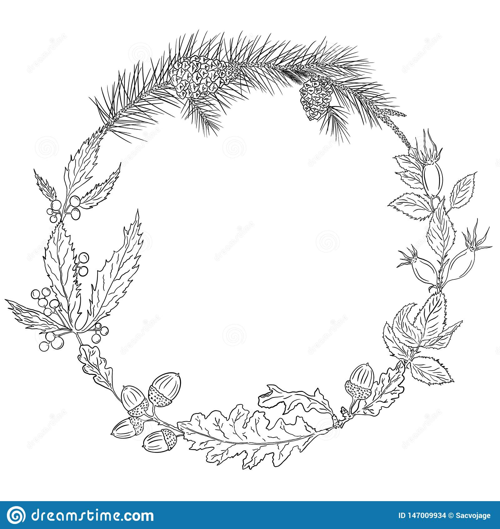 Венок осени листьев и жолудей дуба, поднял бедро, girlish виноградины, ветви сосны и конусы сосны