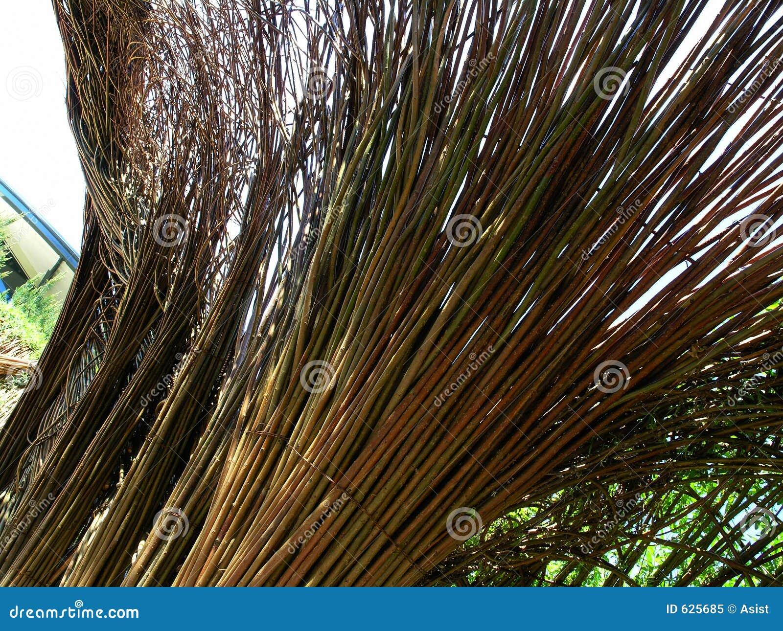 Download верба weave стоковое изображение. изображение насчитывающей художничества - 625685