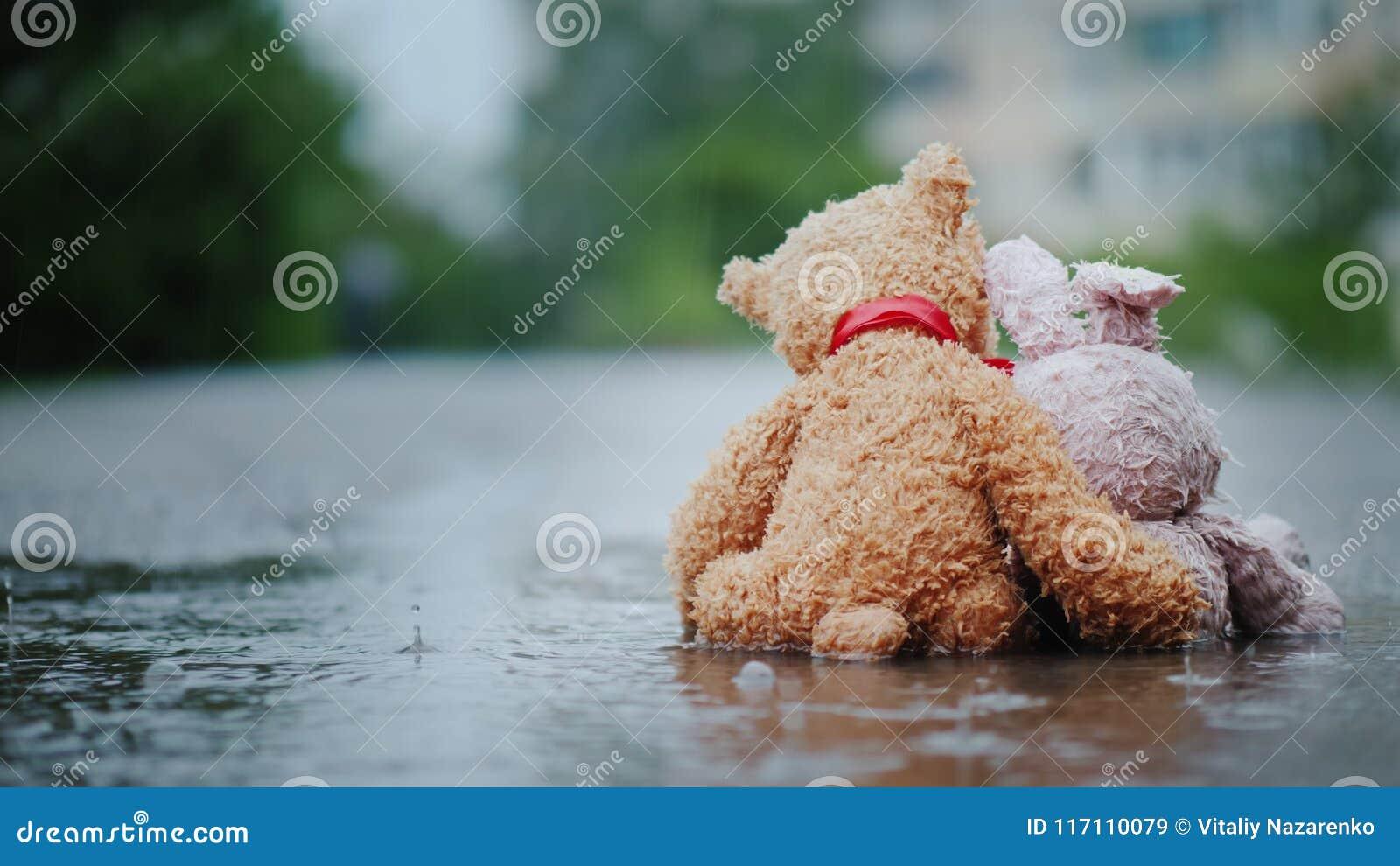Верные друзья - зайчик и новичок медведя сидите сторона - мимо - встаньте на сторону на дороге, влажной под лить дождем передний