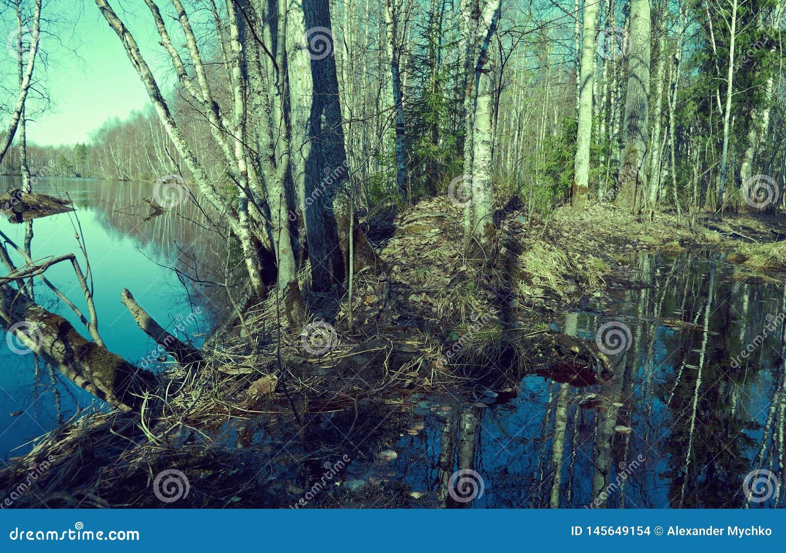Весна затопляя на реке