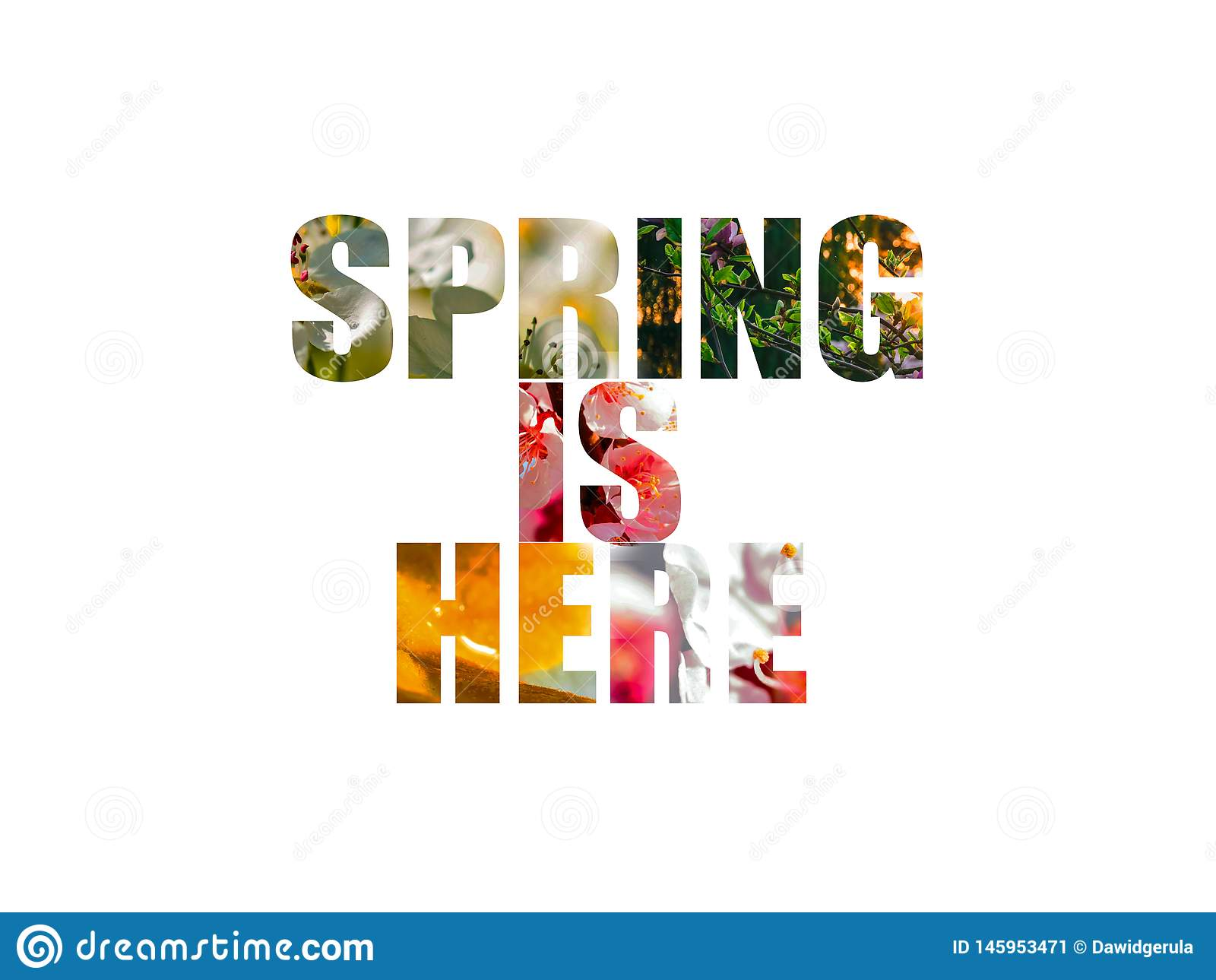 Весна здесь слова с изолированными цветками пинка и белых на заднем плане