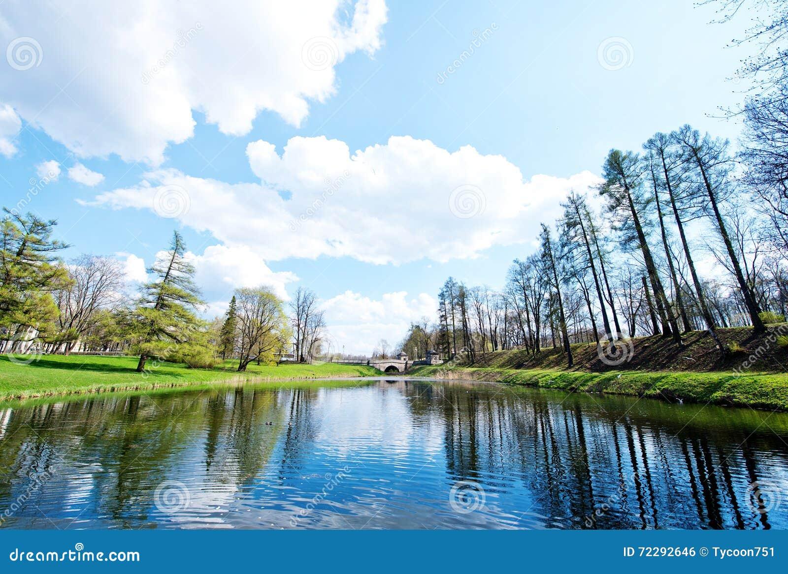 Download весна парка питомника Keukenhof Голландии цветка Стоковое Фото - изображение насчитывающей никто, bluets: 72292646