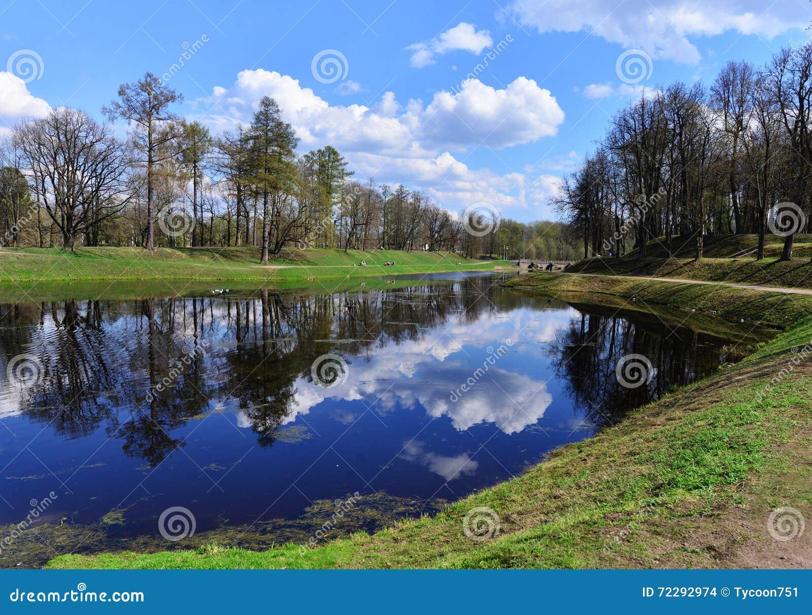 Download весна парка питомника Keukenhof Голландии цветка Стоковое Фото - изображение насчитывающей bluets, злаковик: 72292974