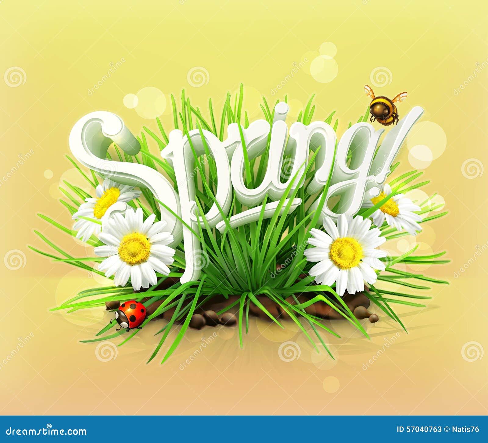 Весна, трава, цветки стоцвета и ladybug