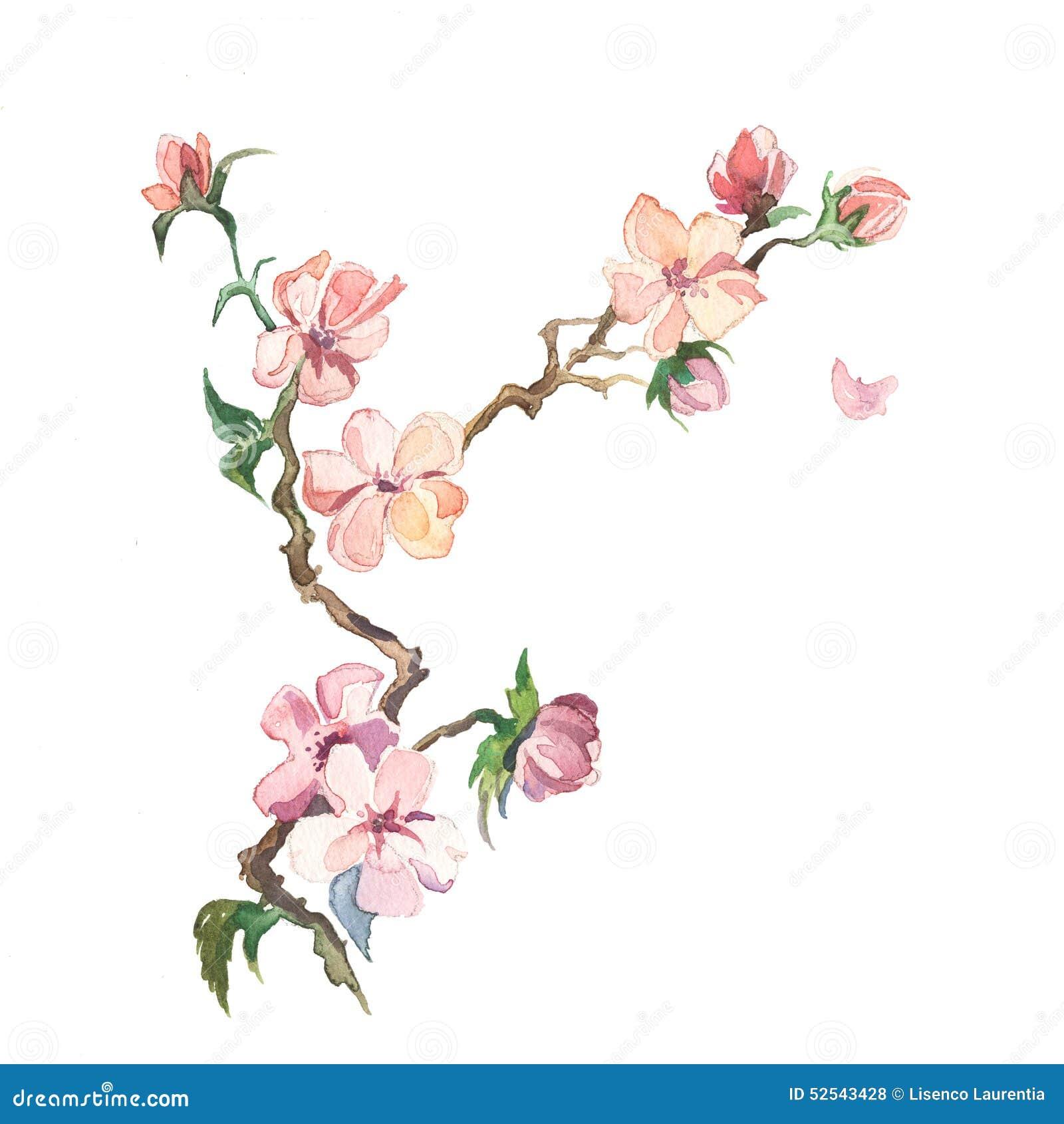 Весна цветет акварель картины