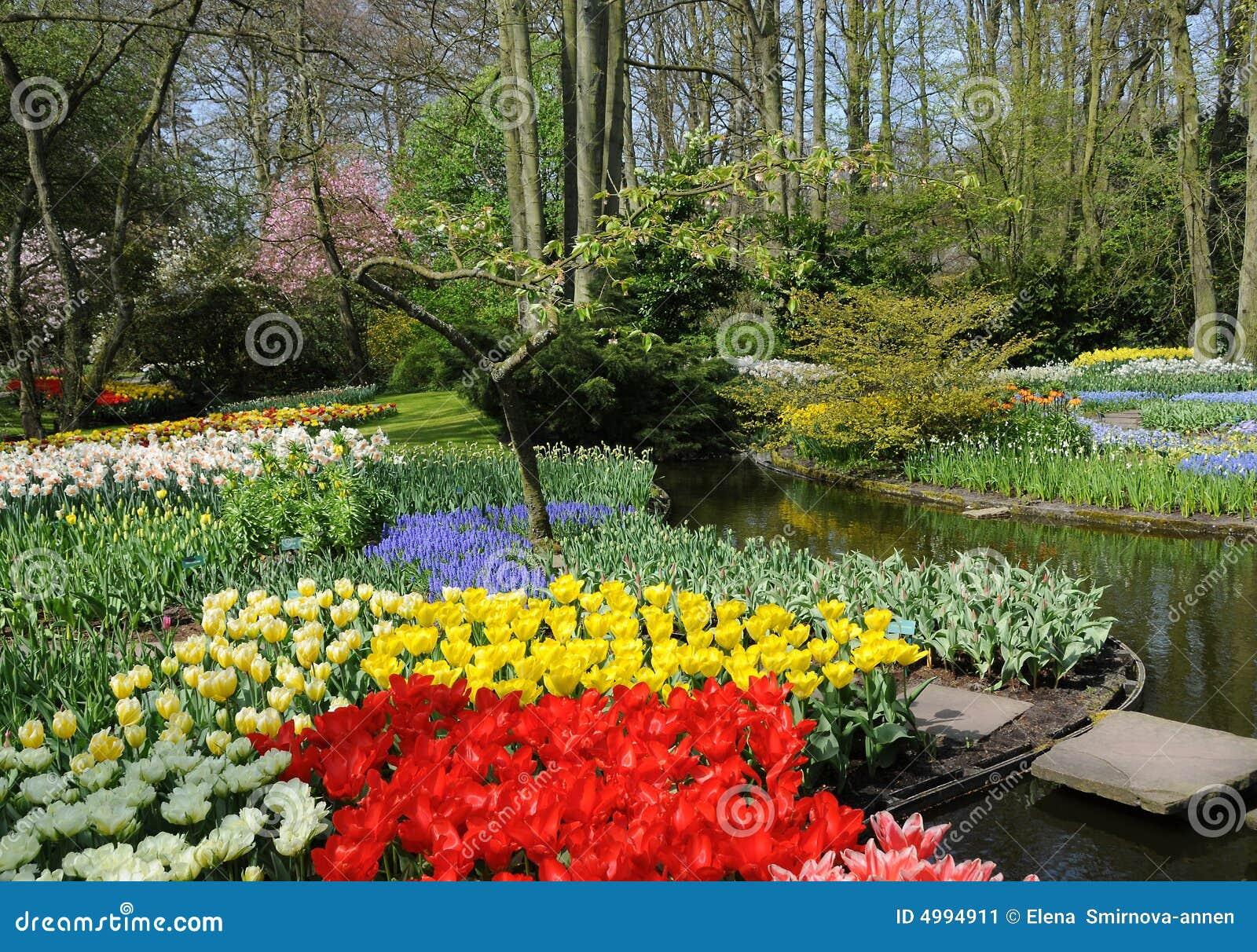 весна цветов