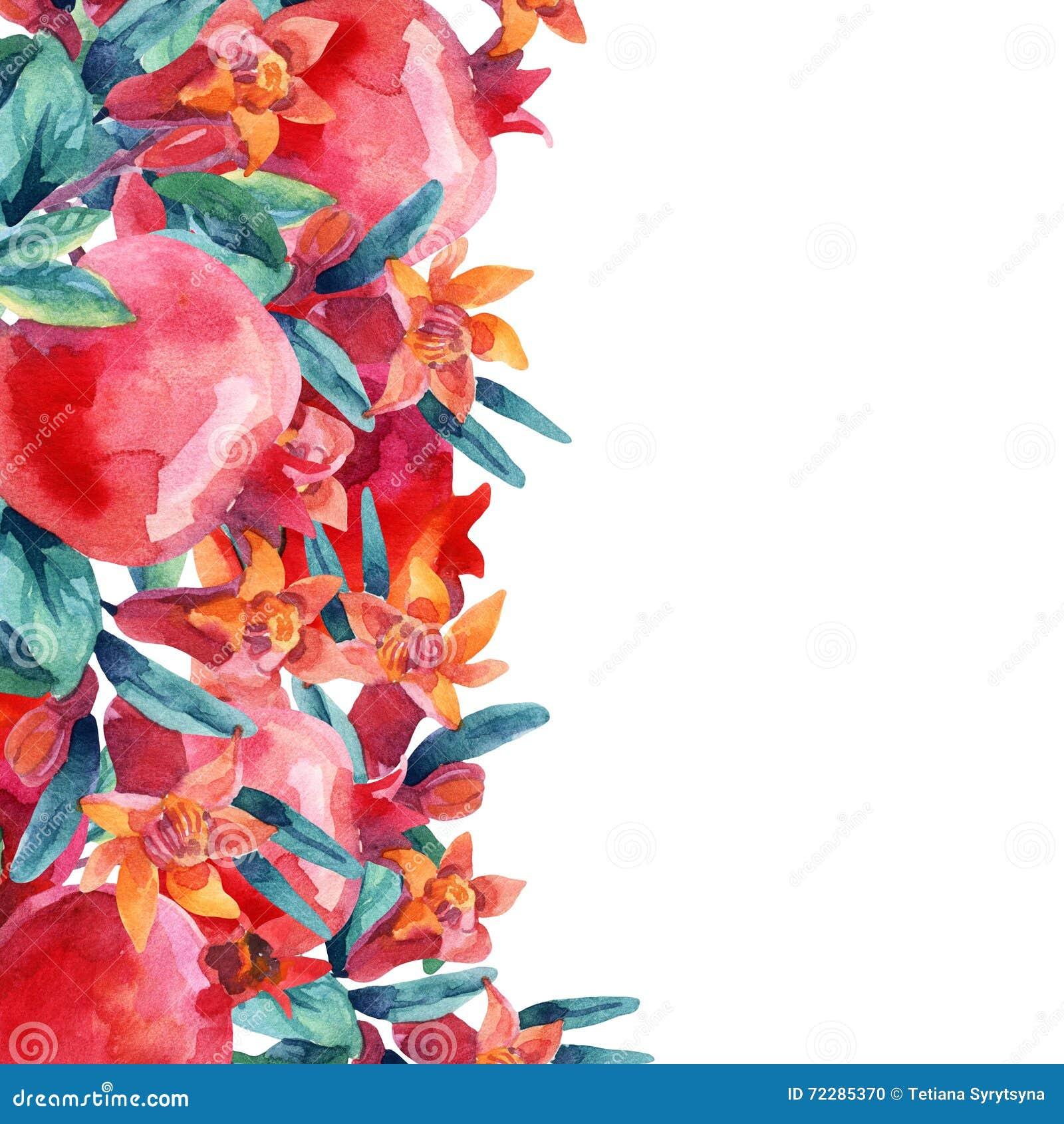 Download Ветви цветеня гранатового дерева акварели и карточка плодоовощ Иллюстрация штока - иллюстрации насчитывающей свеже, backhoe: 72285370