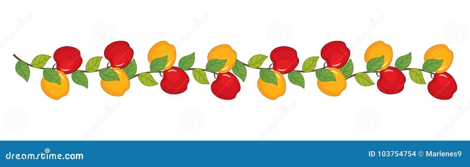 Ветвь вектора с яблоками Иллюстрация вектора яблок
