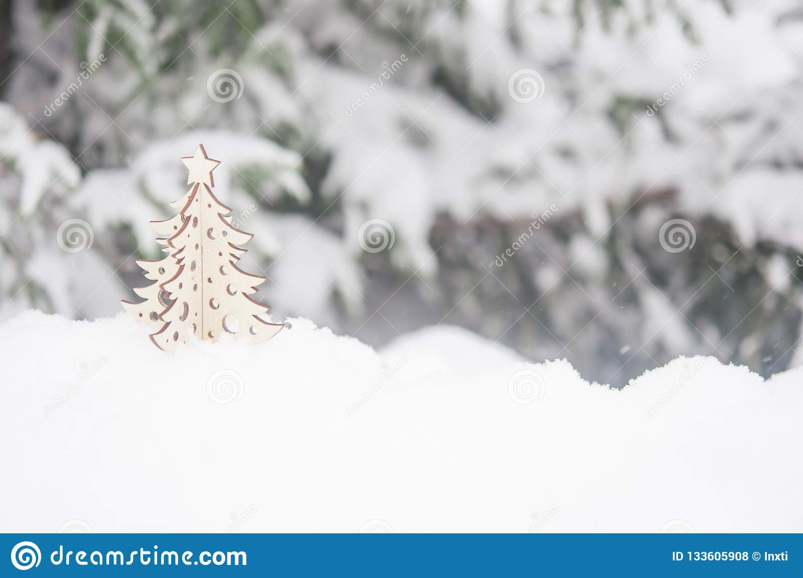 Ветвь дерева ели с снежком