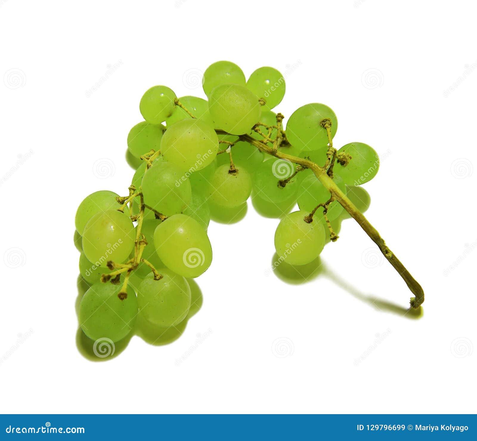 Ветвь зеленых виноградин изолированных на белой предпосылке