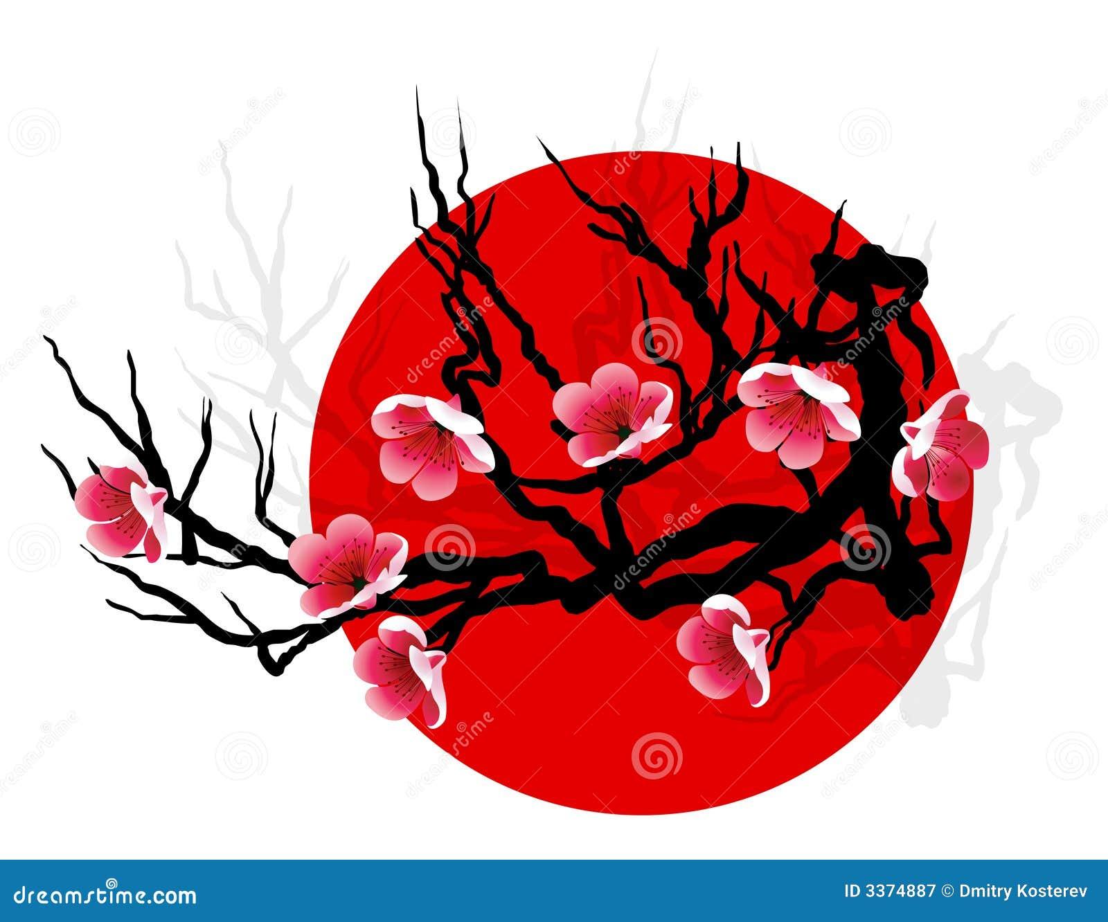 ветвь sakura