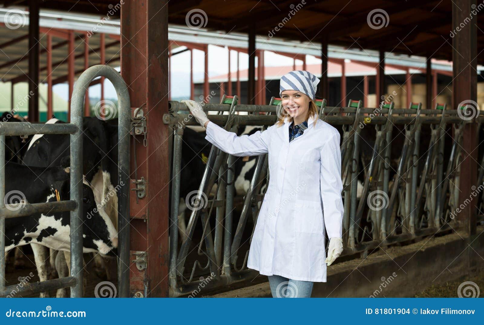 Ветеринарный техник с молочными скотами