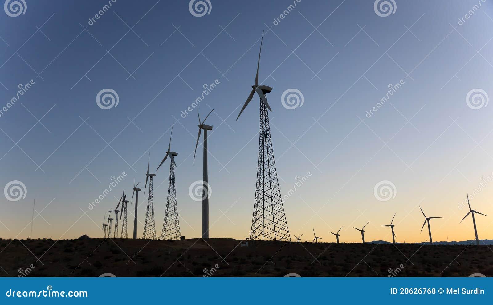 ветер весен силы ладони california