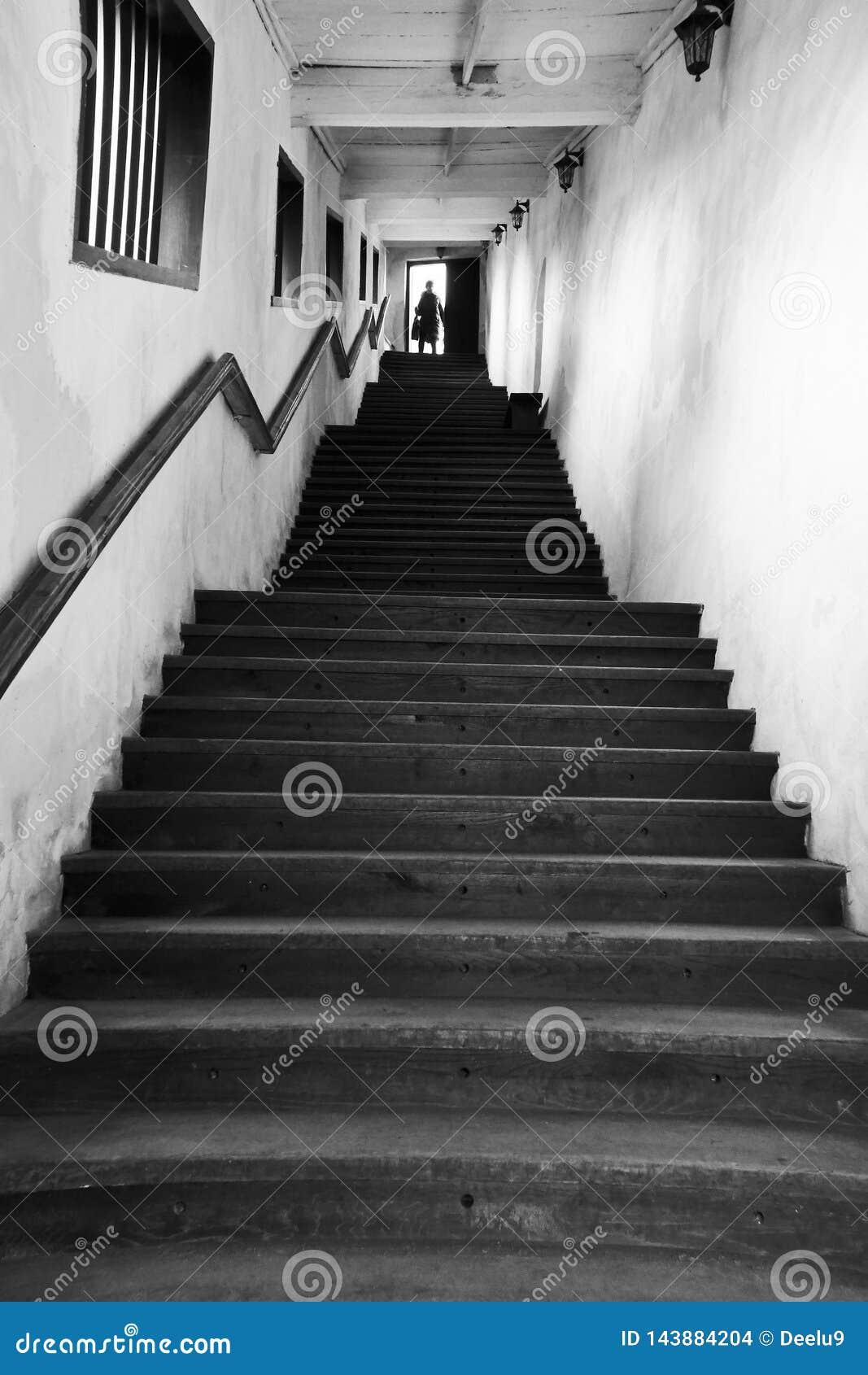 Взбираться вверх лестницы к свету