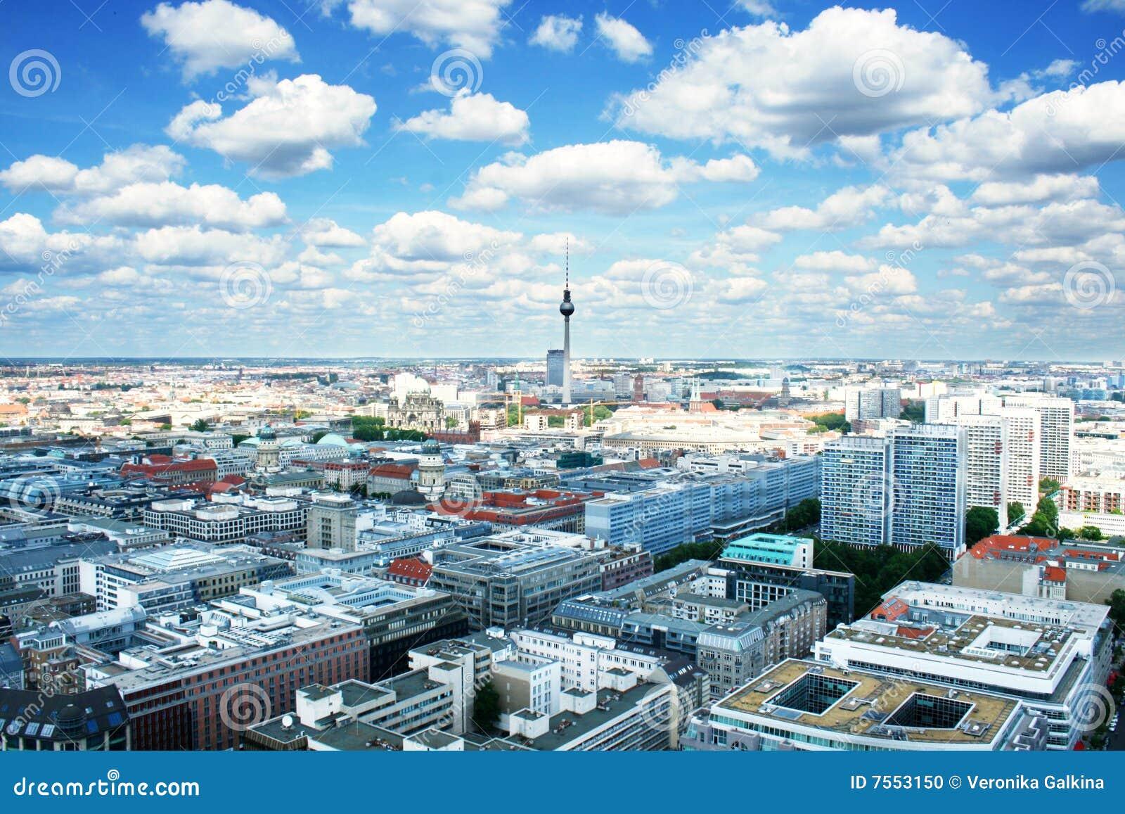 взгляд глаза s птицы berlin