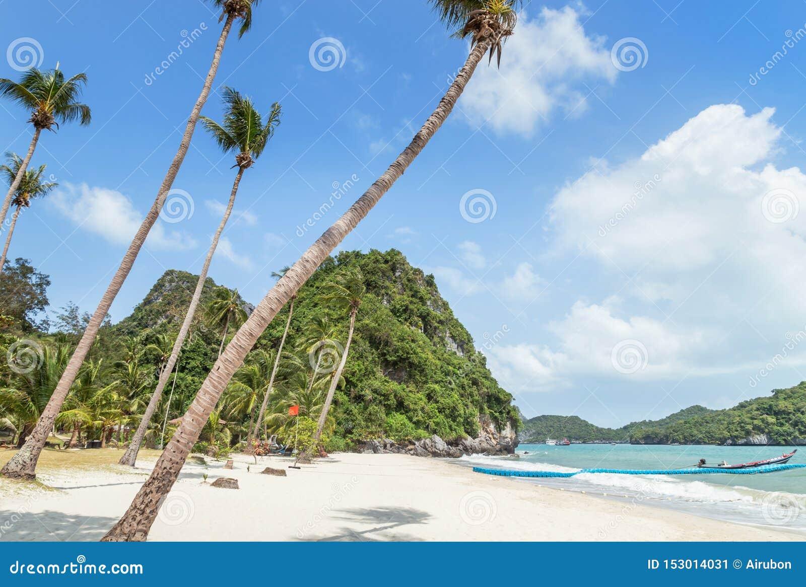 Взгляд ландшафта на животиках Wua складывает пляж острова с пальмами кокоса в парке островов Angthong национальном морском на сол