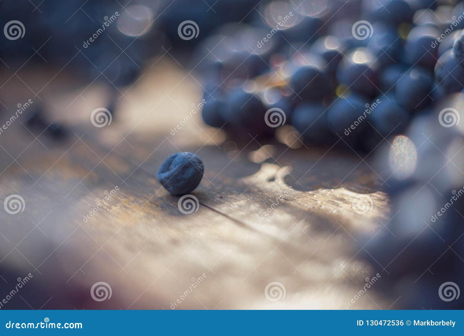 Взгляд макроса голубых виноградин на бочонке вина