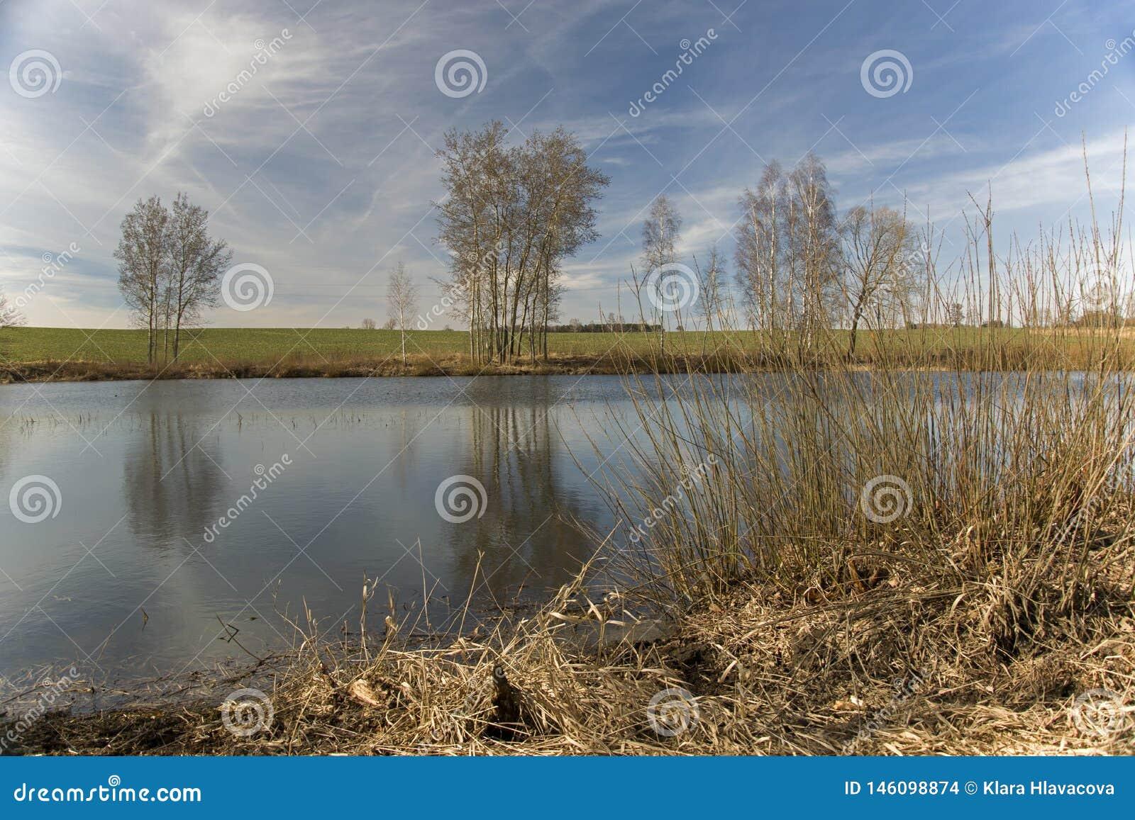 Взгляд над прудом Bachracek весной