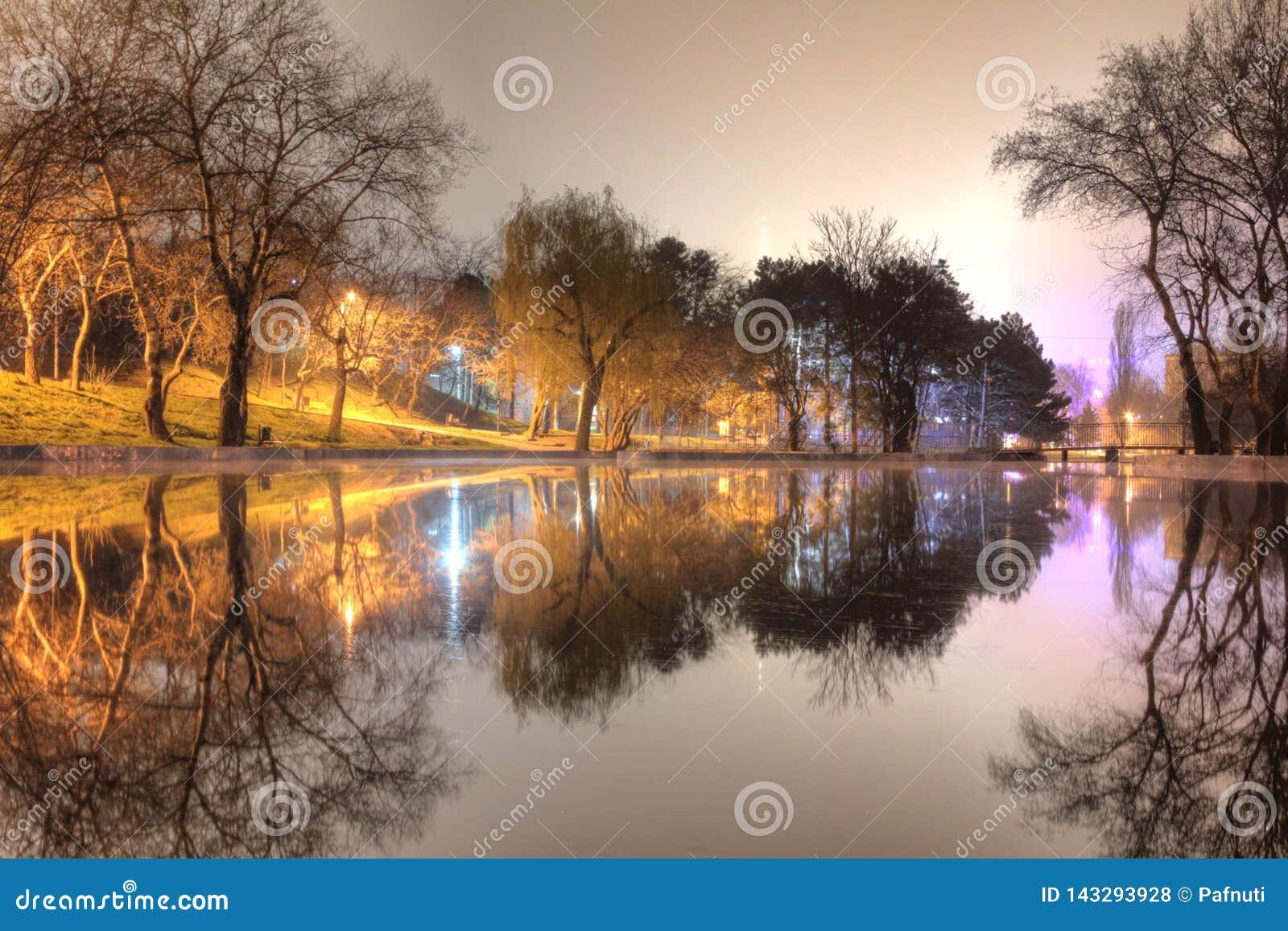 Взгляд ночи парка и озера