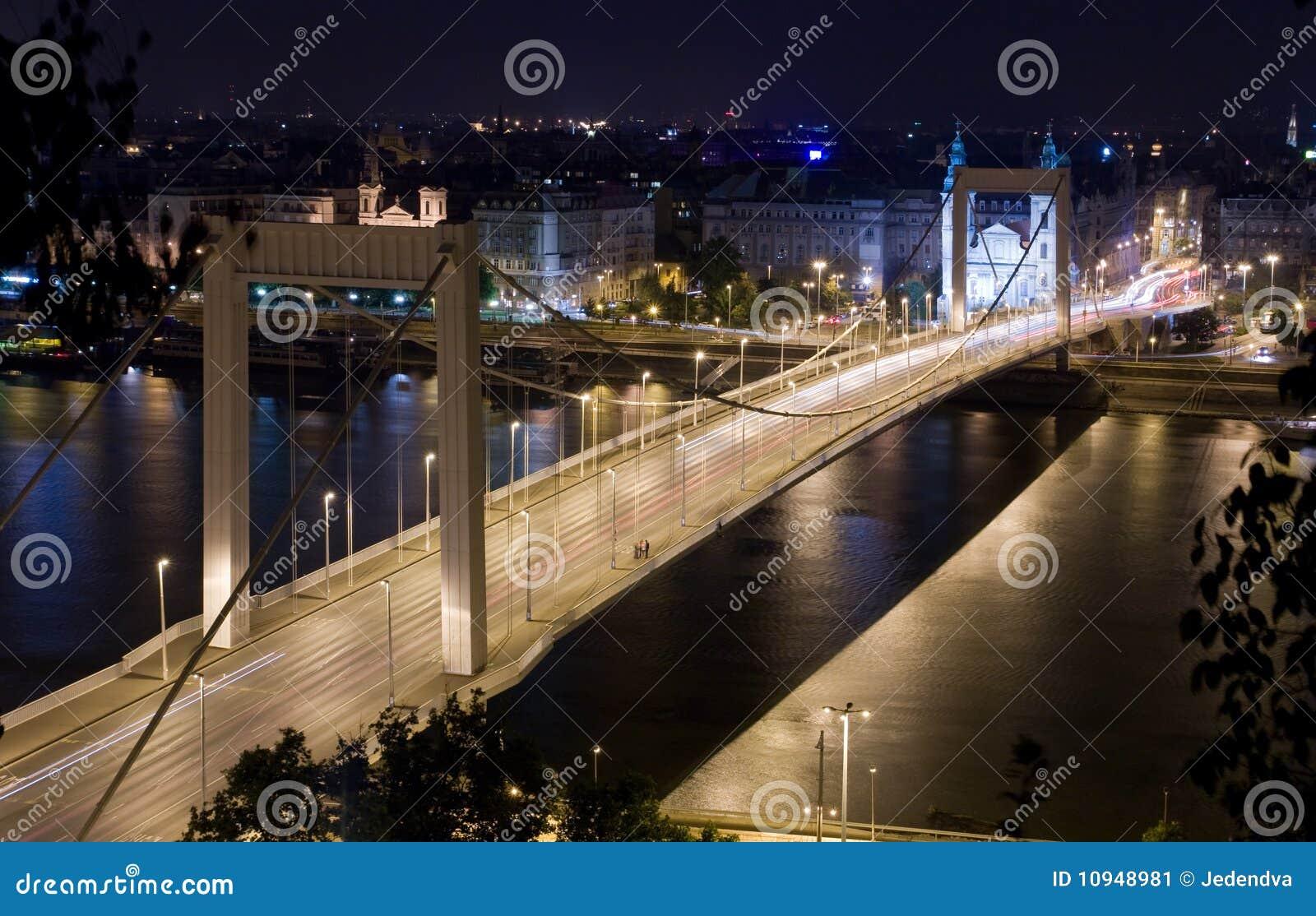 взгляд ночи s elisabeth моста