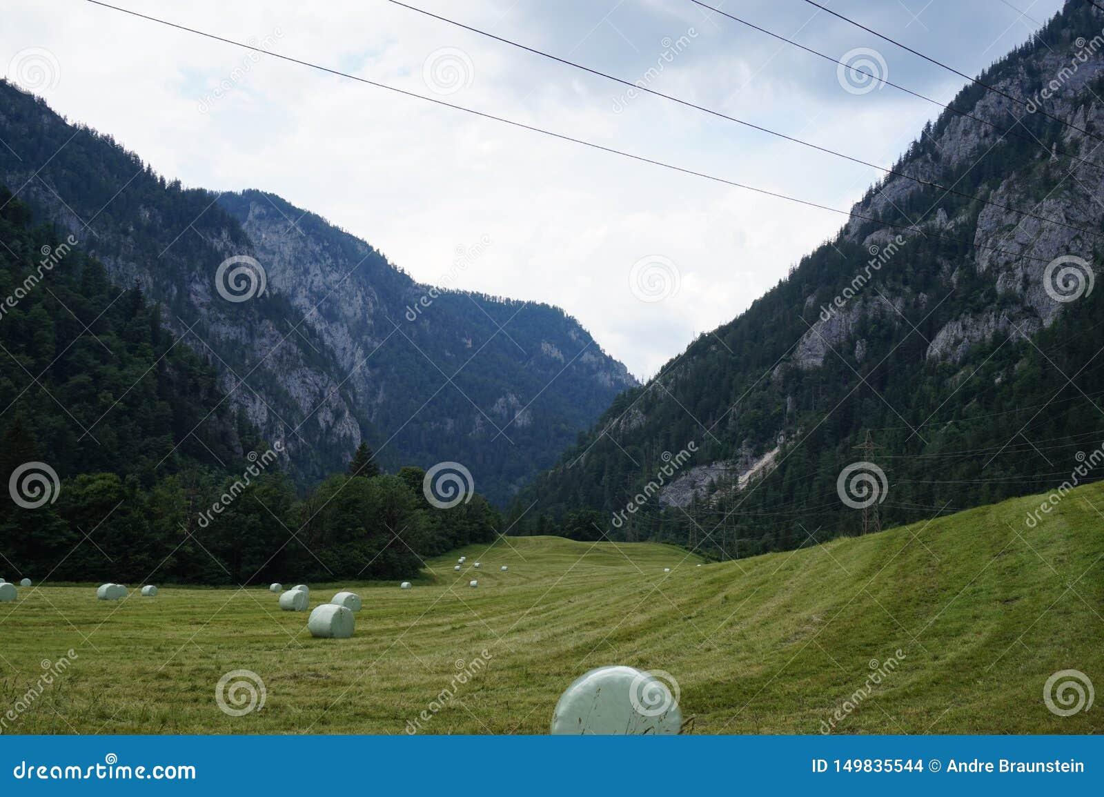 Взгляд от зеленого поля к горам