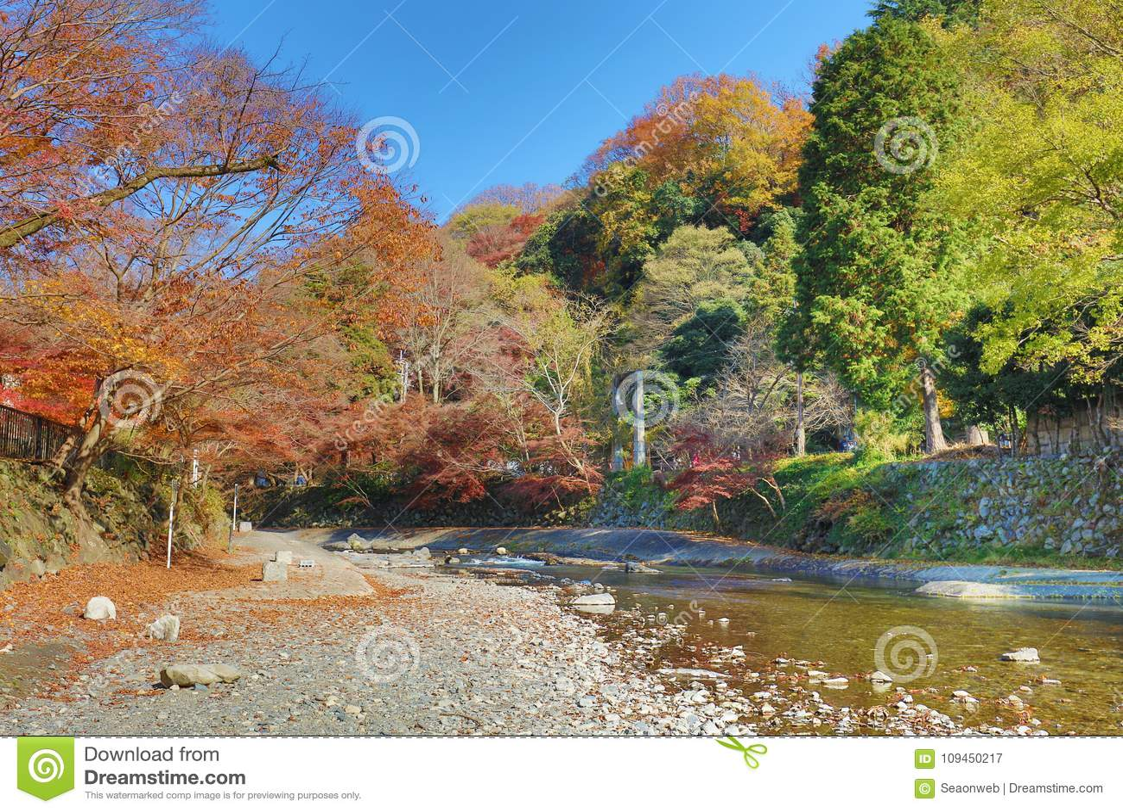 взгляд природы Kamitakano Higashiyama на падении