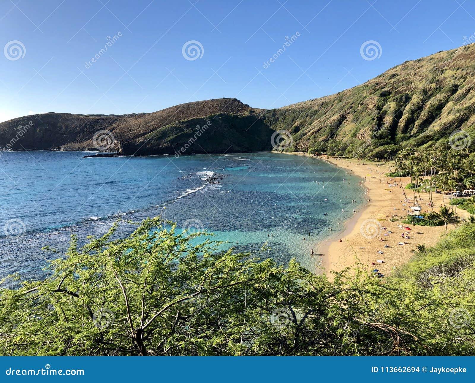 Взгляд сверху залива Hanauma, Гаваи