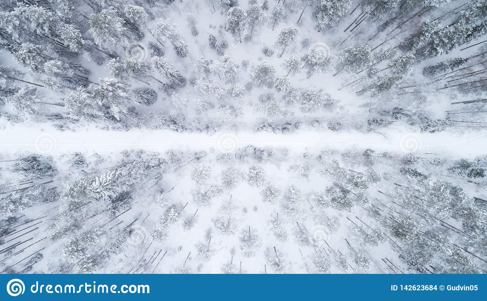 Взгляд сверху на зимней скользкой дороге пропуская через снег покрыло coniferous лес
