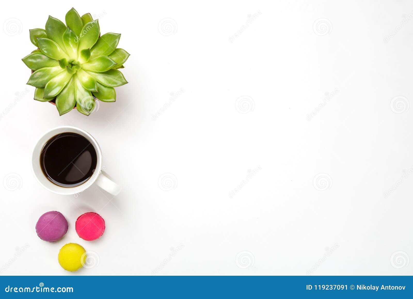 Взгляд сверху пустого стола офиса Зеленое растение в баке, чашке кофе и красочных macaroons на белой предпосылке Скопируйте космо