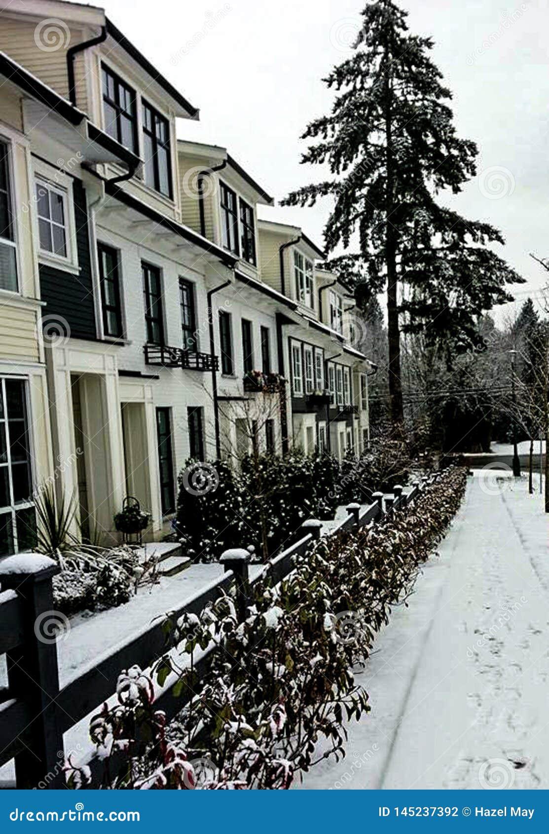 Взгляд улицы в зиме со снегом