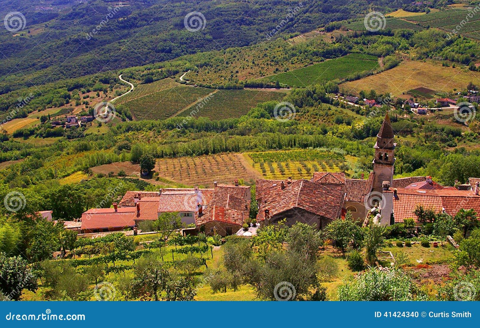 Взгляд виноградников и крыш от Motovun Хорватии