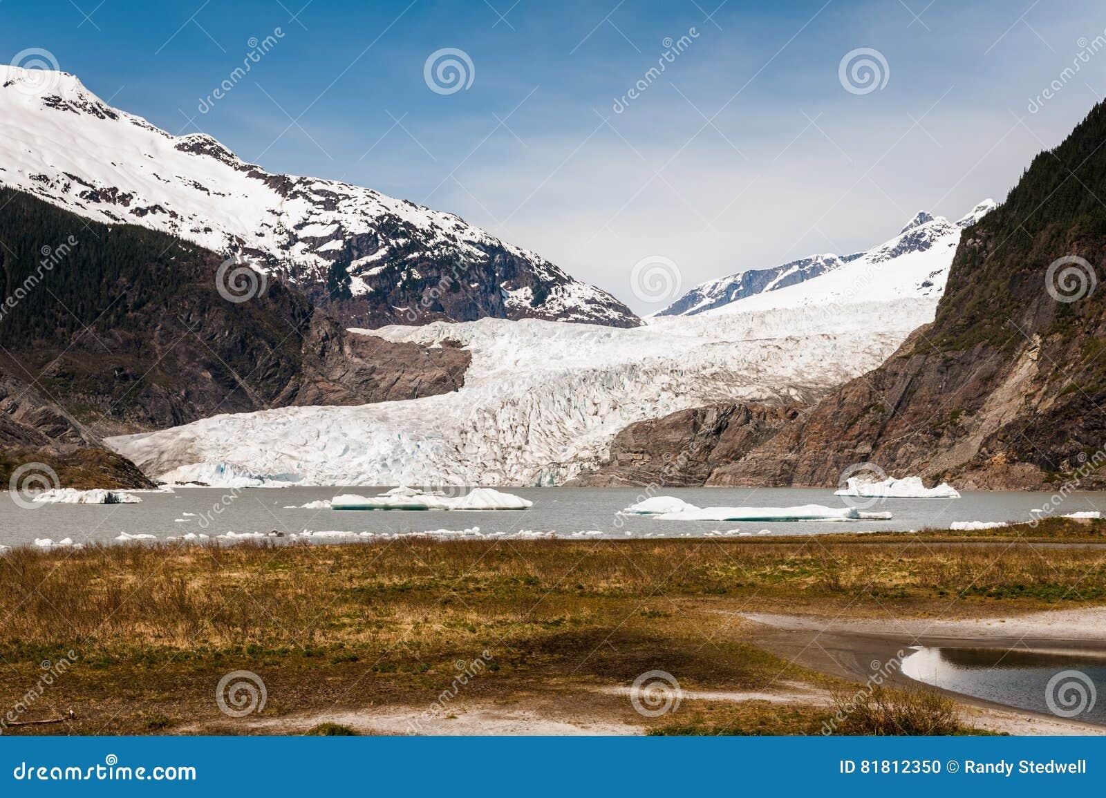 Взгляд ледника Menden Hall Аляски от задней части с травой
