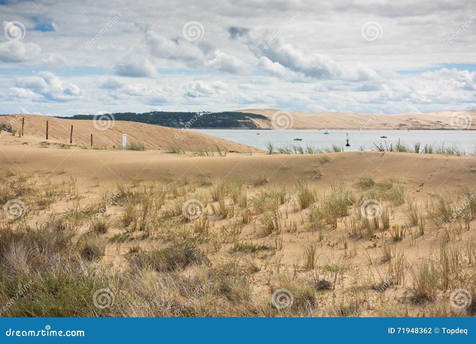 Взгляд залива Arcachon, Аквитания, Франция